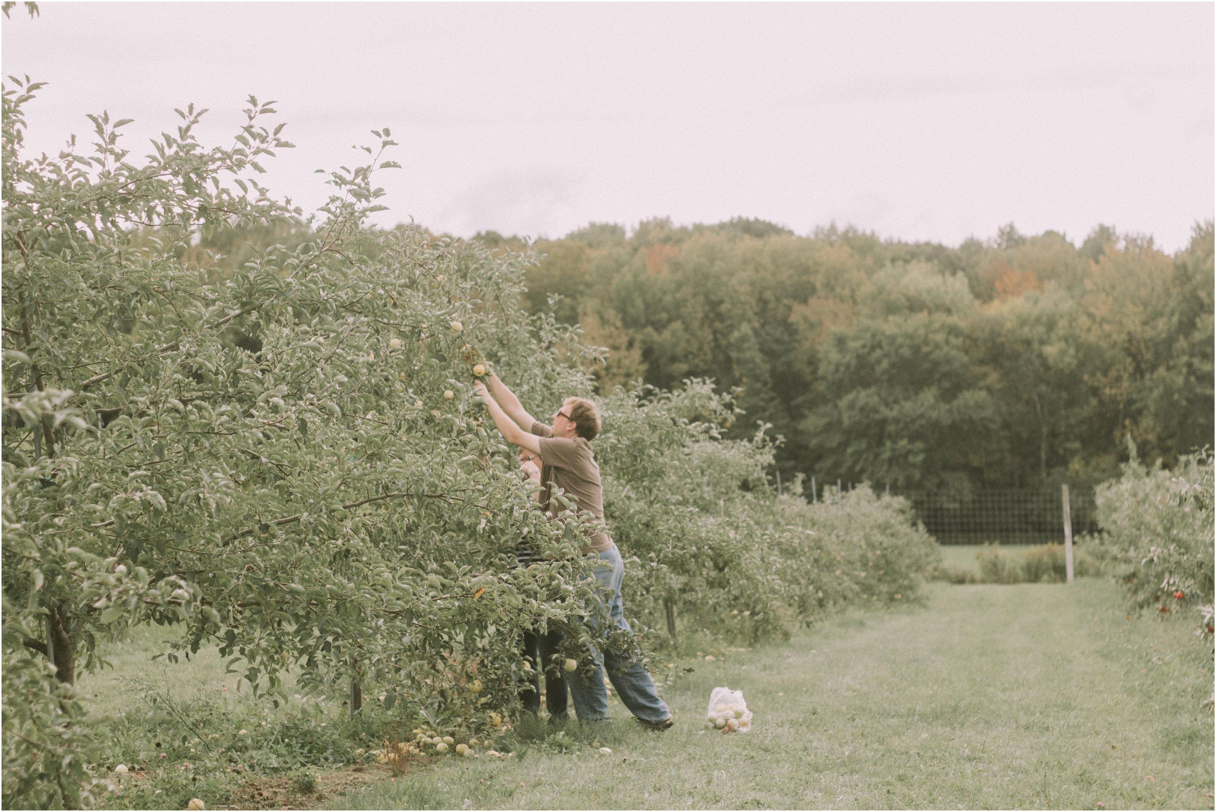 Wisconsin Apple Picking Documentry Photographer 10.jpg