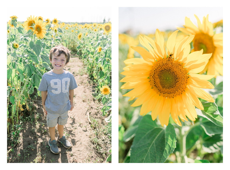 Wisconsin-Motherhood-Family-Photographers-Elle-x-Troy-Photography-Door-County-The-Farm-The-Helgesons_0150.jpg
