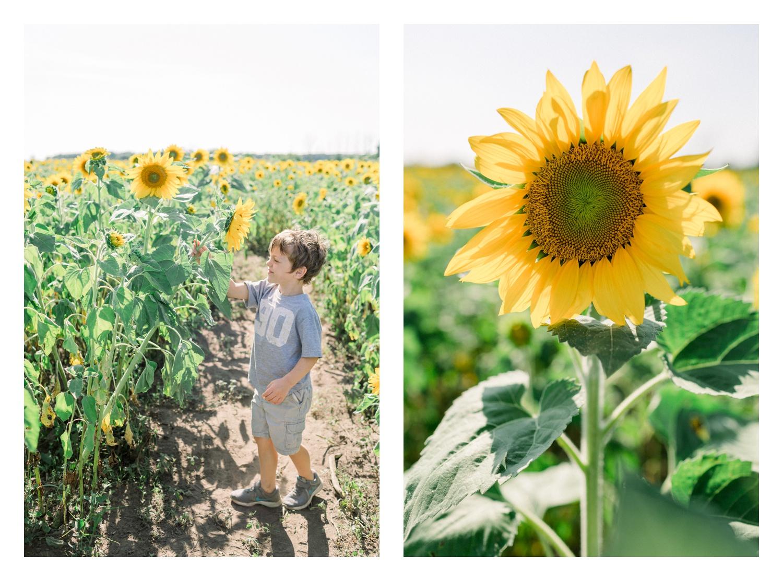 Wisconsin-Motherhood-Family-Photographers-Elle-x-Troy-Photography-Door-County-The-Farm-The-Helgesons_0151.jpg