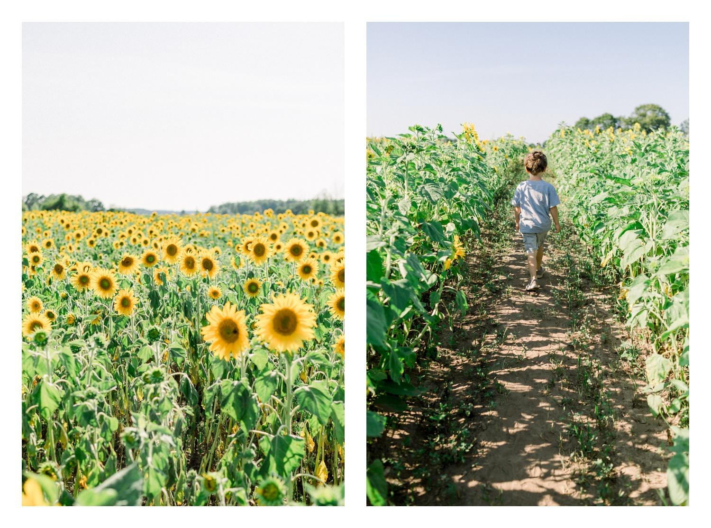 Wisconsin-Motherhood-Family-Photographers-Elle-x-Troy-Photography-Door-County-The-Farm-The-Helgesons_0153.jpg