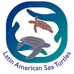 LAST - LAST (Latin American Sea Turtles) is part of WIDECAST's (Wider Caribbean Sea Turtle Conservation Network) Latin American Program in Costa Rica, including efforts not only on the Caribbean Se but also on the Pacific coast. WIDECAST is an expert network of biologists, managers, community leaders and educators in more than 40 nations and territories, committed to an integrated, regional capacity that ensures the recovery and sustainable management of depleted sea turtle populations.The main work of the volunteers is assisting the staff of the project with the data collection, protection of eggs and nesting turtles and rescue and rehabilitation center duties. It involves night patrols and hatchery shifts as well as daytime work like beach cleanup, or small projects, including initial construction of the hatcheries.
