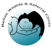 Belize Wildlife & Referral Clinic - BWRC provides care and rehabilitation for injured, orphaned, or otherwise imperiled wildlife; a voice for humane treatment of animals; and environmental education for future generations.