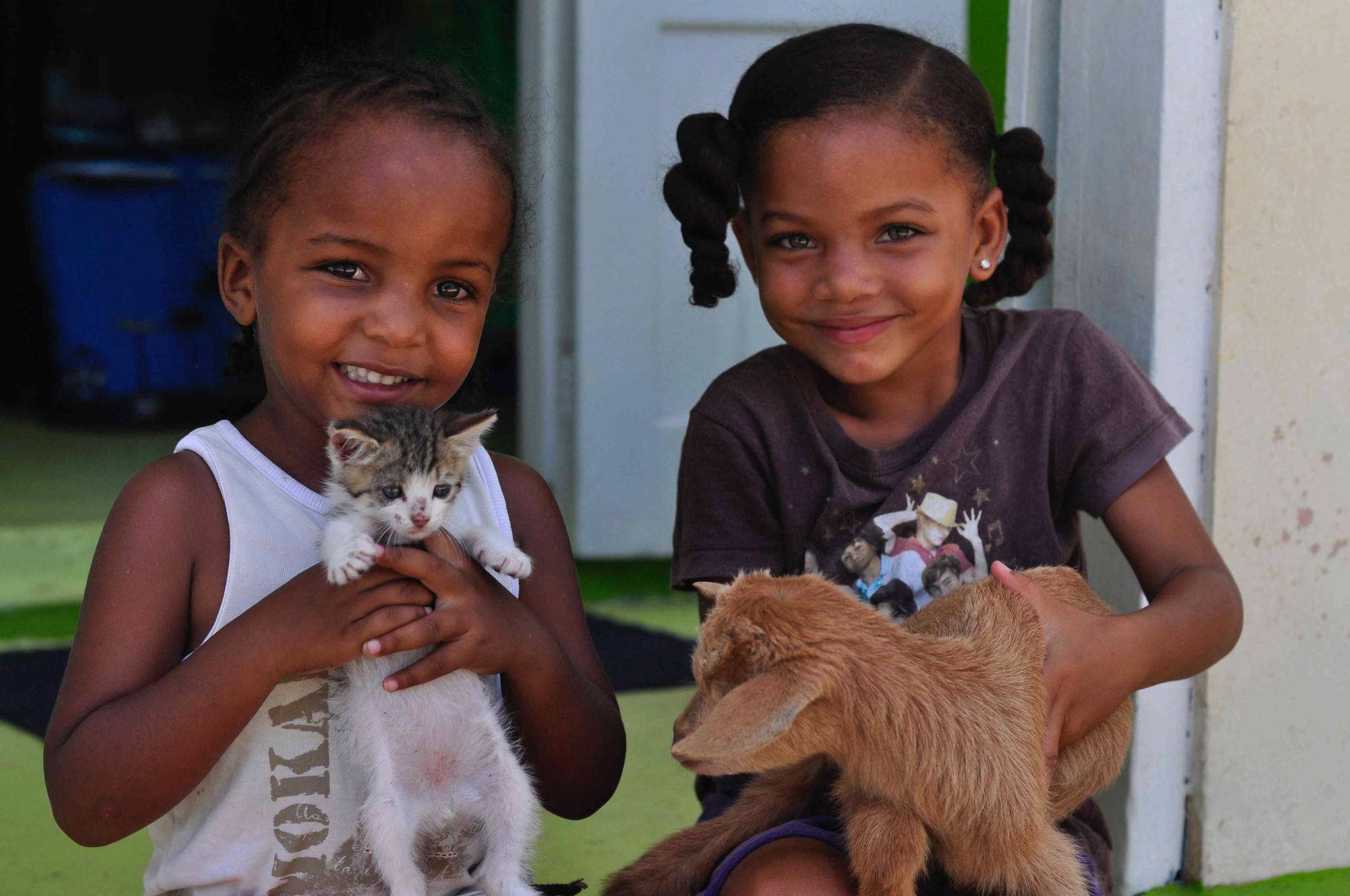 Southern Grenadines Animal Kindness - SGAK is a non-profit organization, born out of the dream of a few people in the Grenadines who have observed the effects of neglect, starvation, abuse and disease on the animals in the islands. The primary goal is to reduce birth rates and disease. They also hope to better educate younger people about care and abuse, while making an improvement to animal welfare on Union Island and Mayreau.