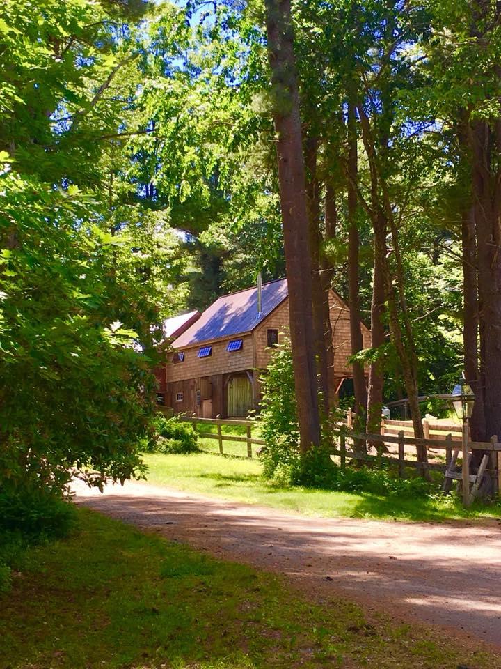 Barn in summer.jpg