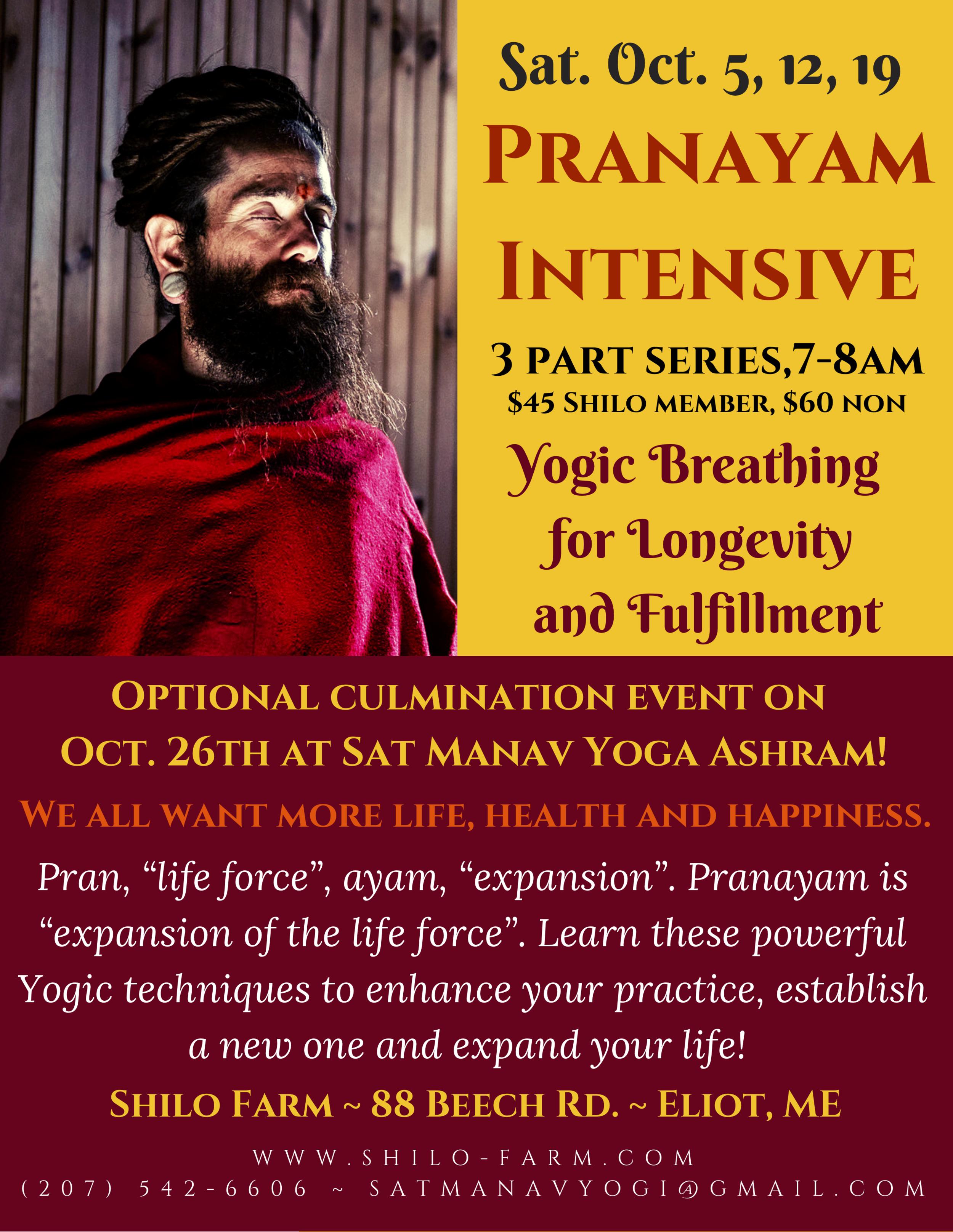 Shugs Pranayam Poster.png