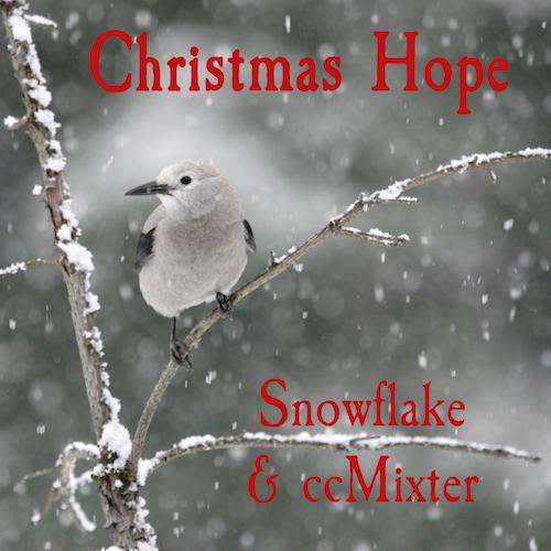 christmas hope album.jpeg