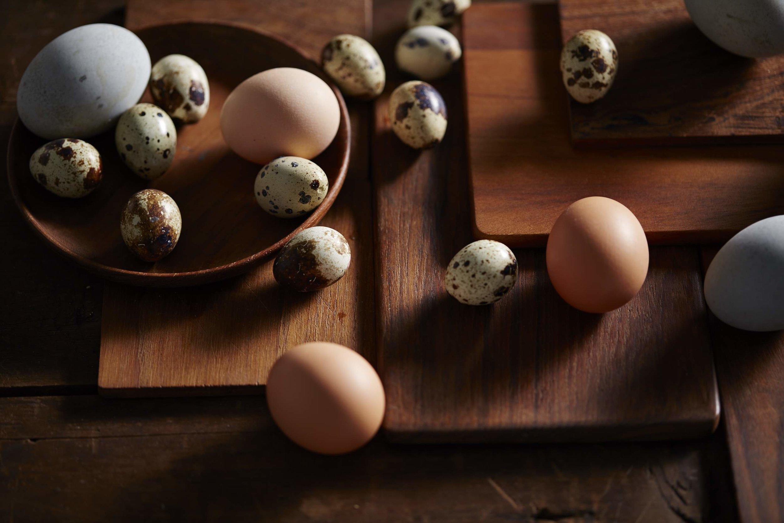 Eggs-02.jpg