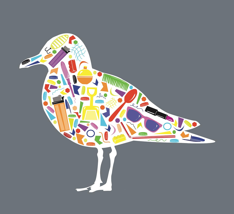 Plastic in Shorebirds