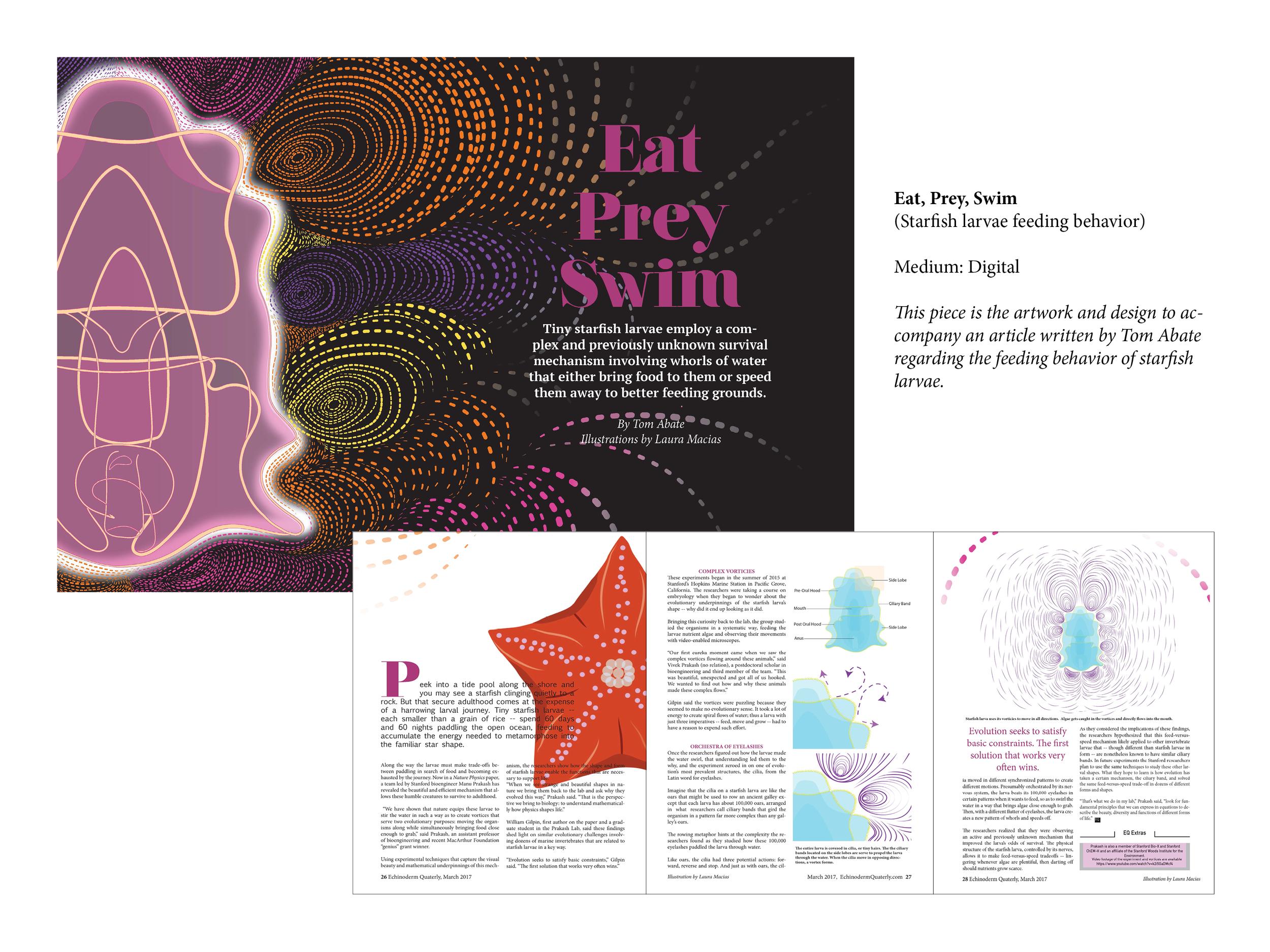 """""""Eat, Prey, Swim"""" Article Art"""