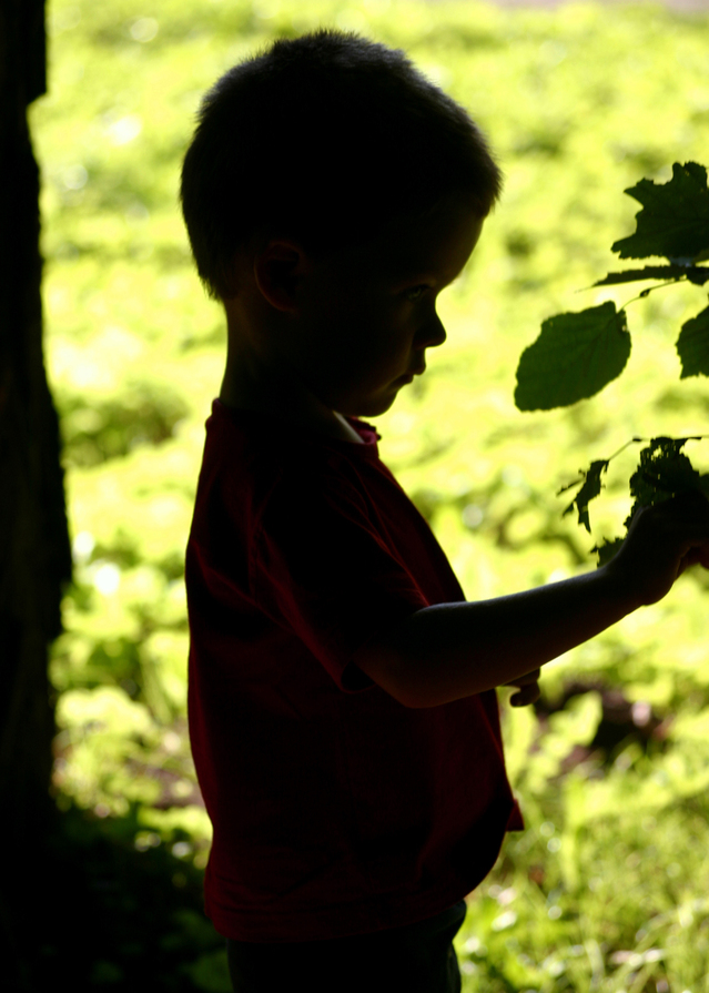 """Forest and Nature School in Canada - """"Kuba"""" stock photo FreeImages.com user Wojciech Wolak - Keeping In Touch BC"""