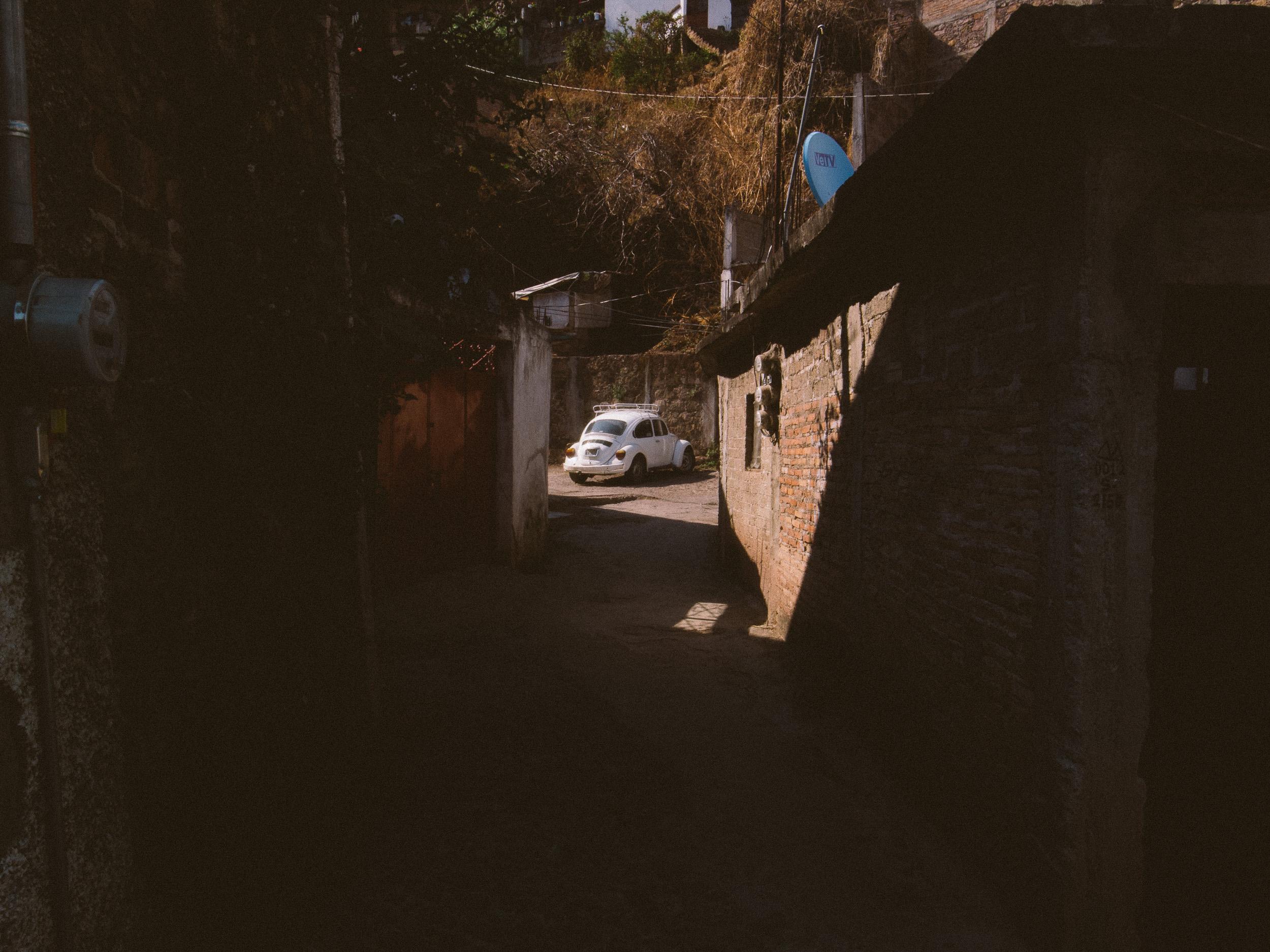 Taxco Beetles-4.jpg