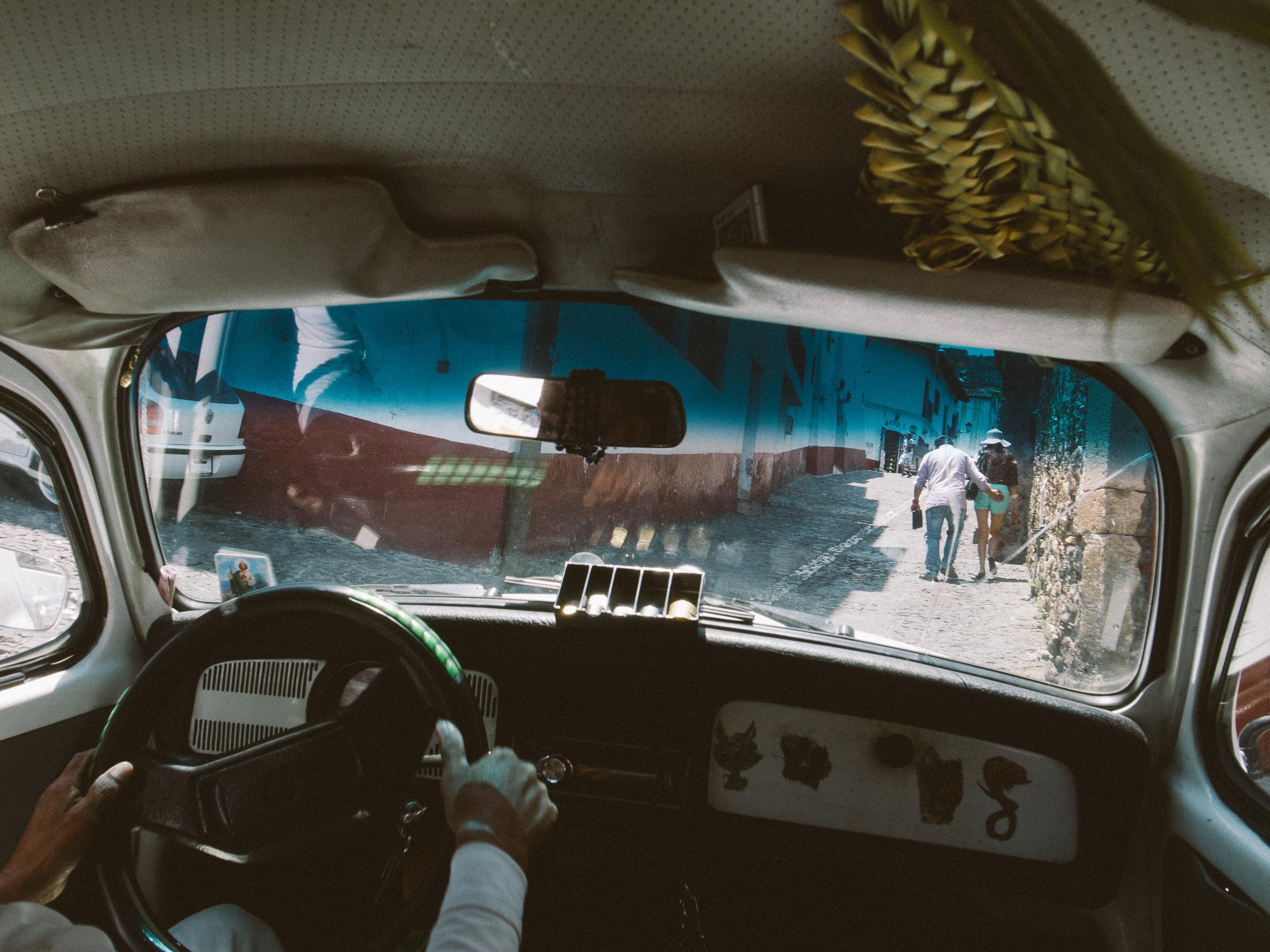 Taxco Beetles-1.jpg