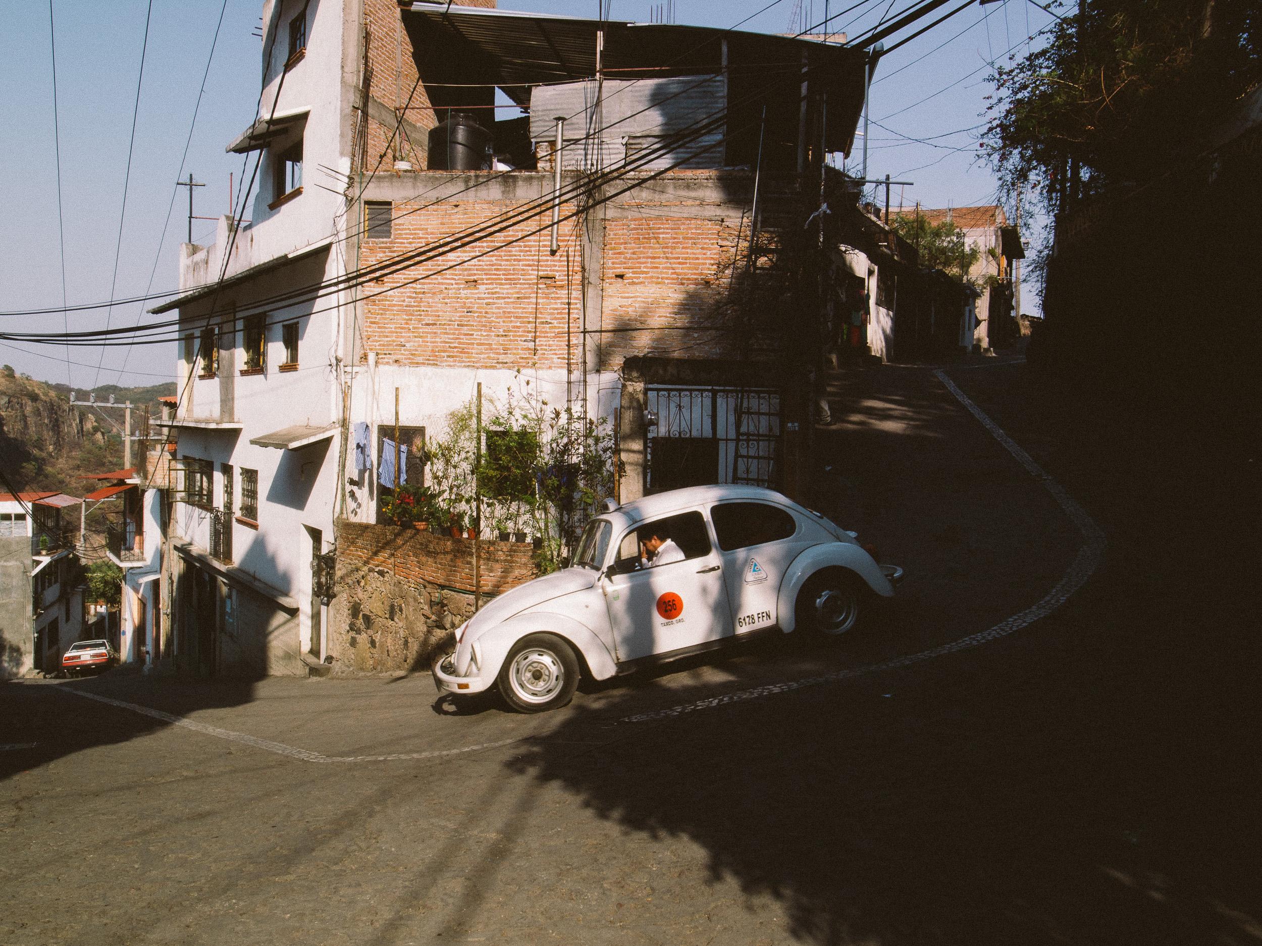 Taxco Beetles-7.jpg