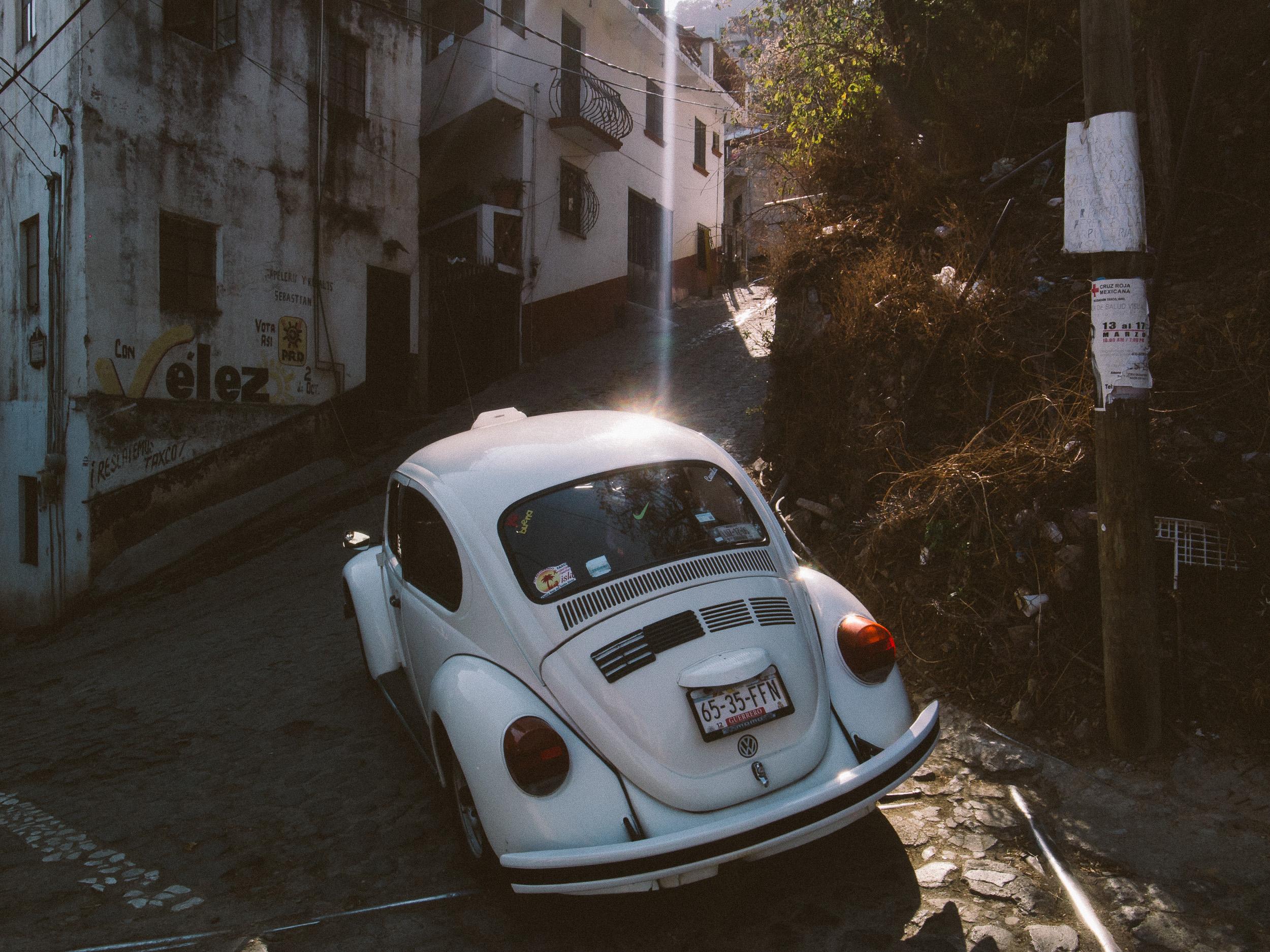 Taxco Beetles-6.jpg
