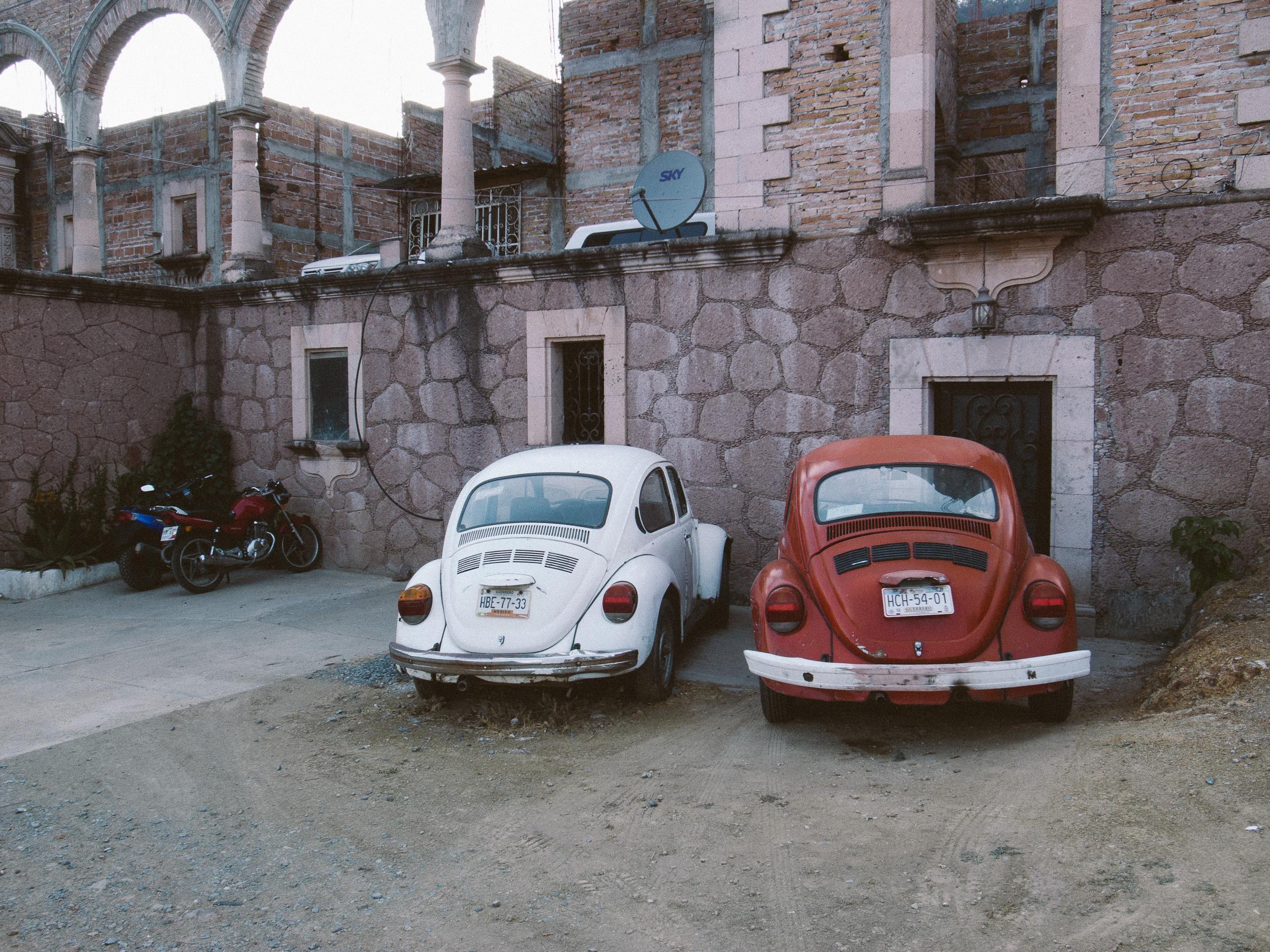 Taxco Beetles-11.jpg