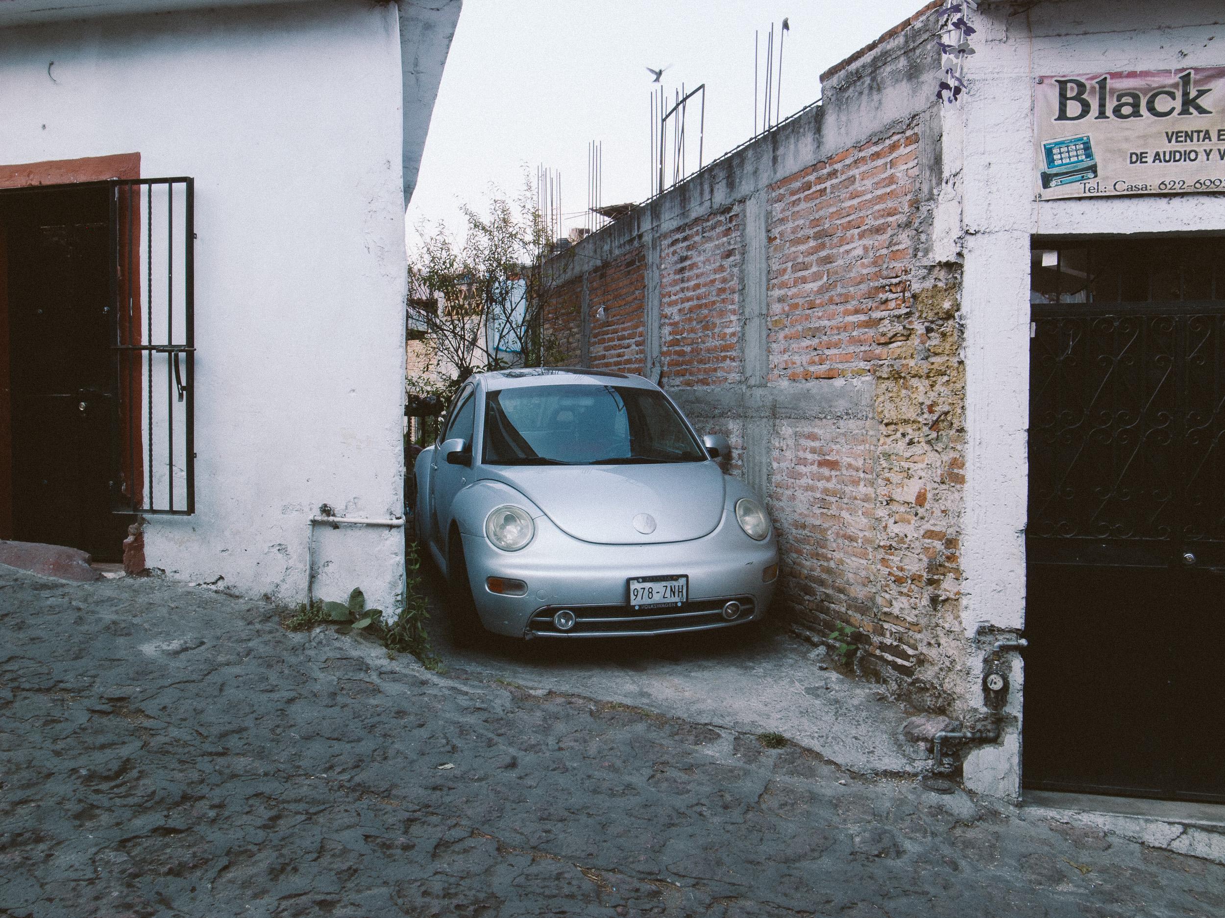 Taxco Beetles-10.jpg