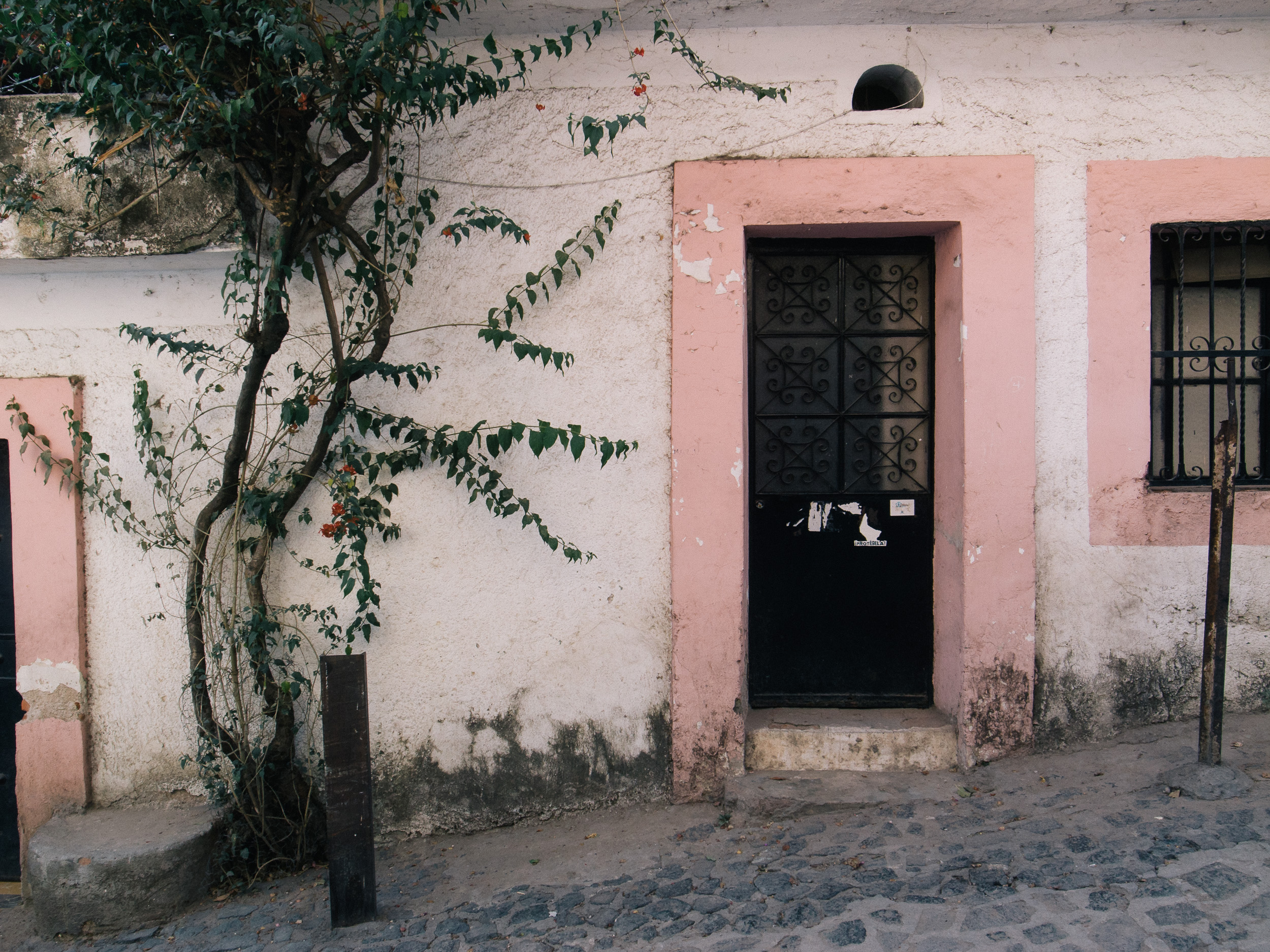 Walking Taxco pt1-5.jpg