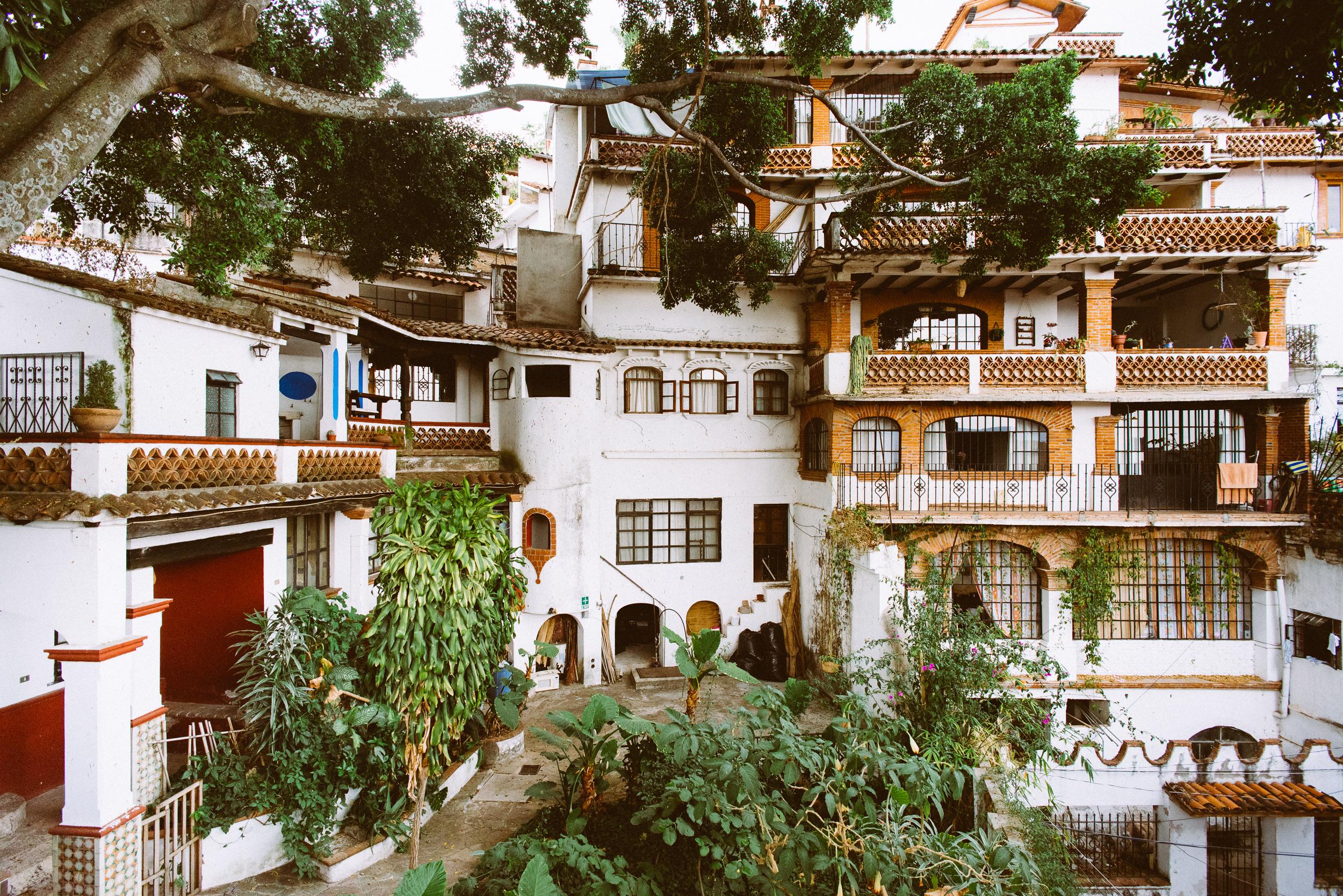 Violante's house