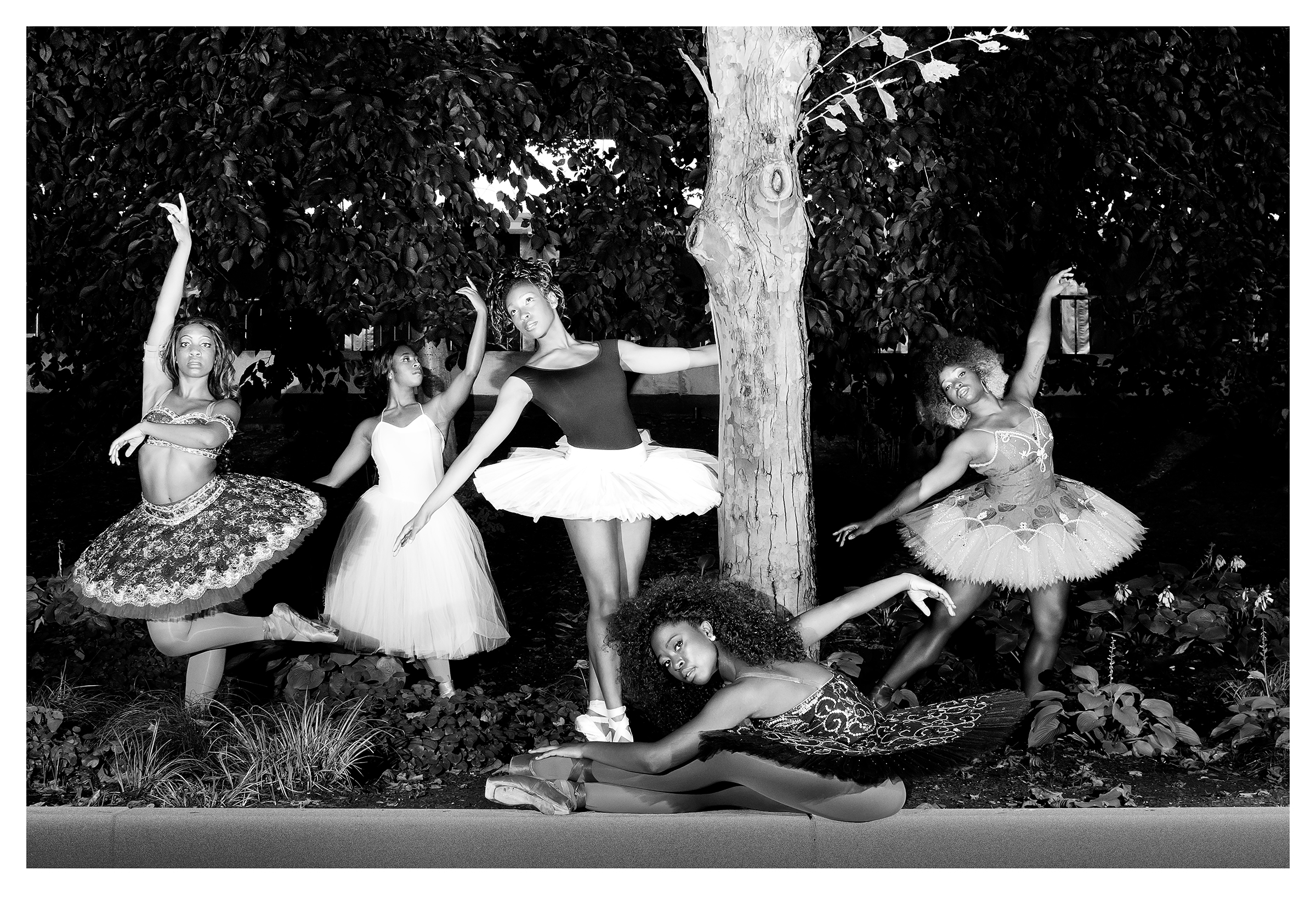 THE BALLERINA GARDEN | © PRESTON LEWIS THOMAS
