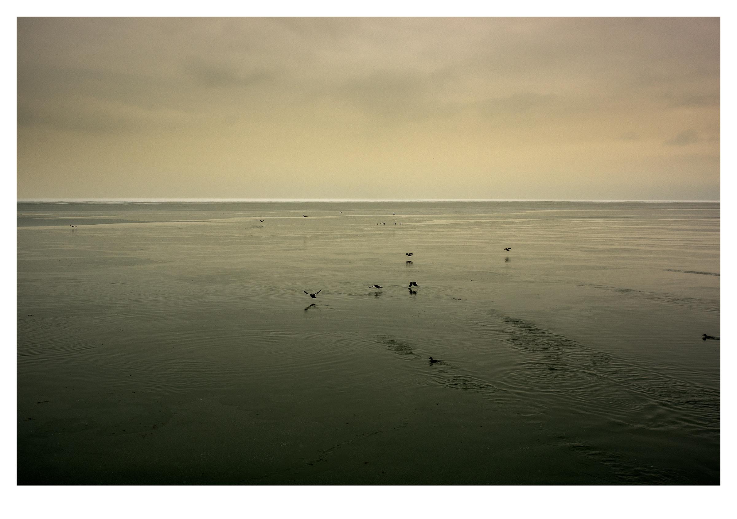 Sage Horizon