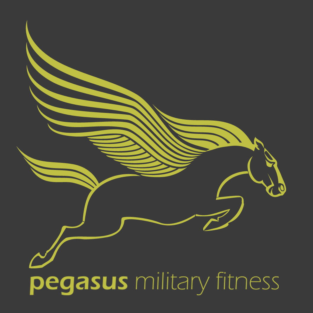 Pegasus horse and text with grey background - square.jpg