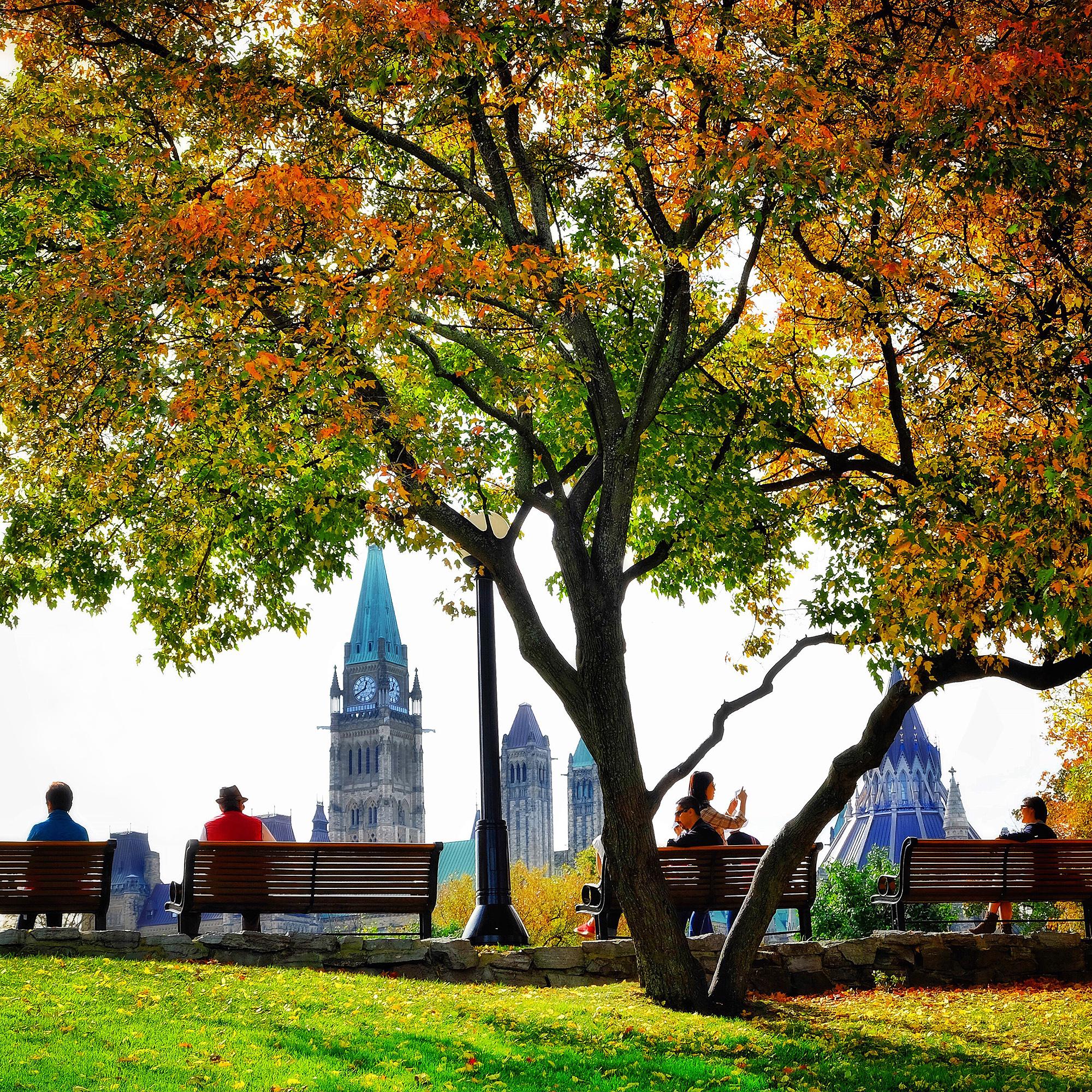 Exploring the heart of Ottawa  (3hrs)