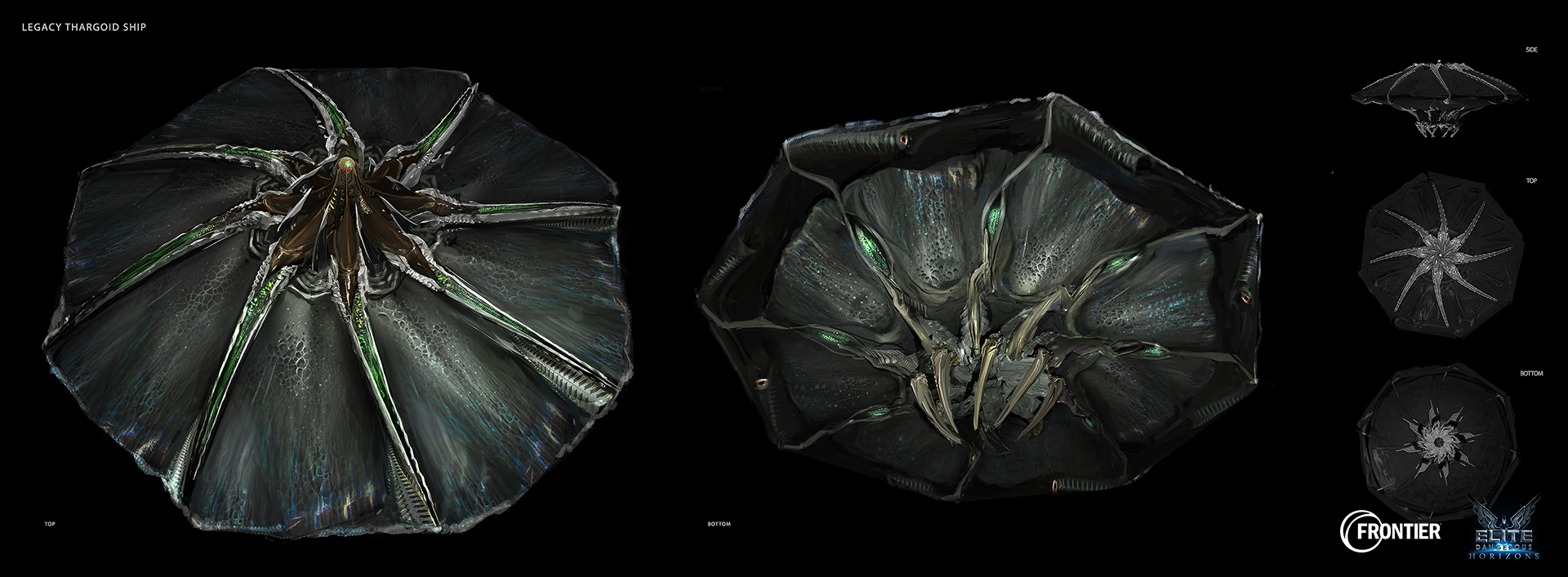 Legacy_Thargoid_Top_06.jpg
