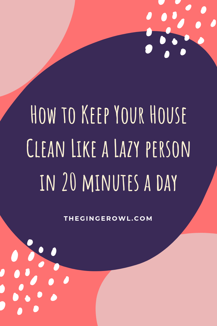 How to Keep Your House Clean Like a Lazy person (1).png