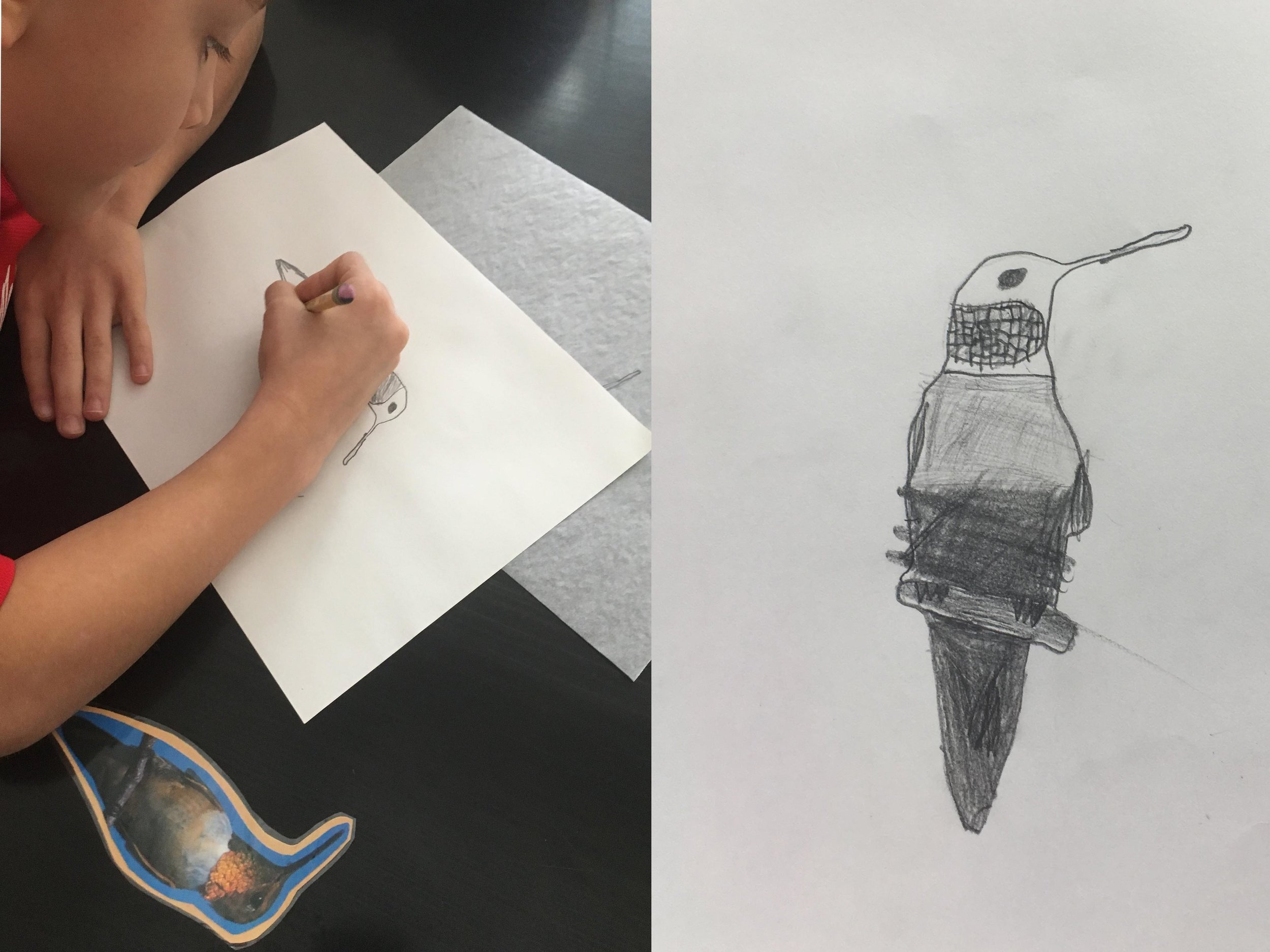 4th Grade Drawing Lesson