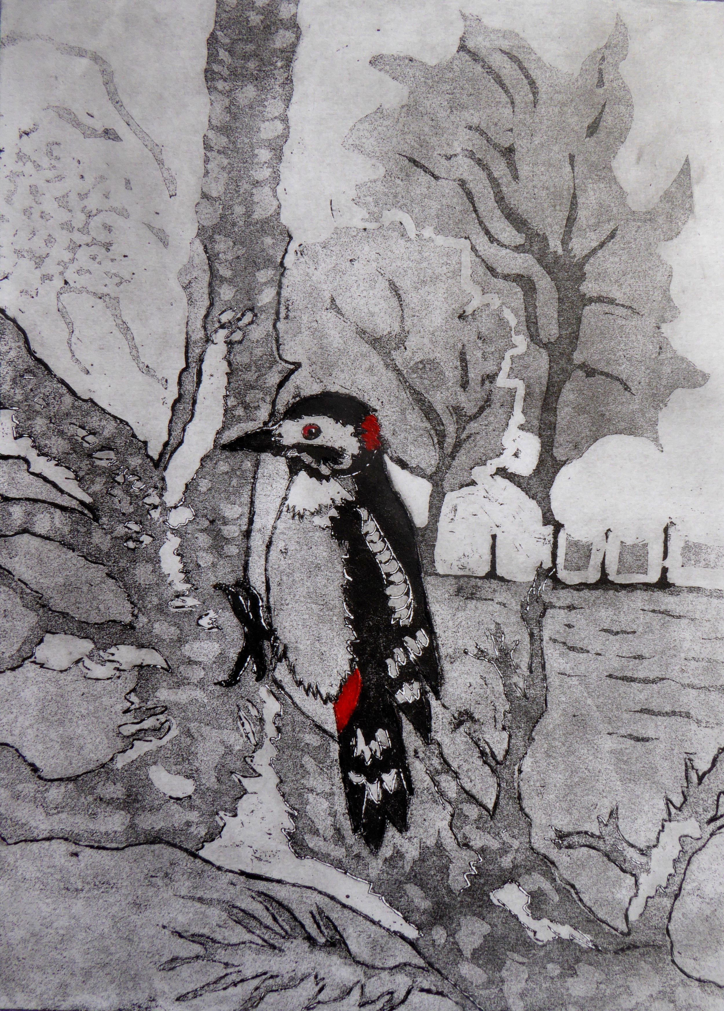 - Woodpecker: at its favourite drilling post in our garden - 43 x 36cm (unframed)