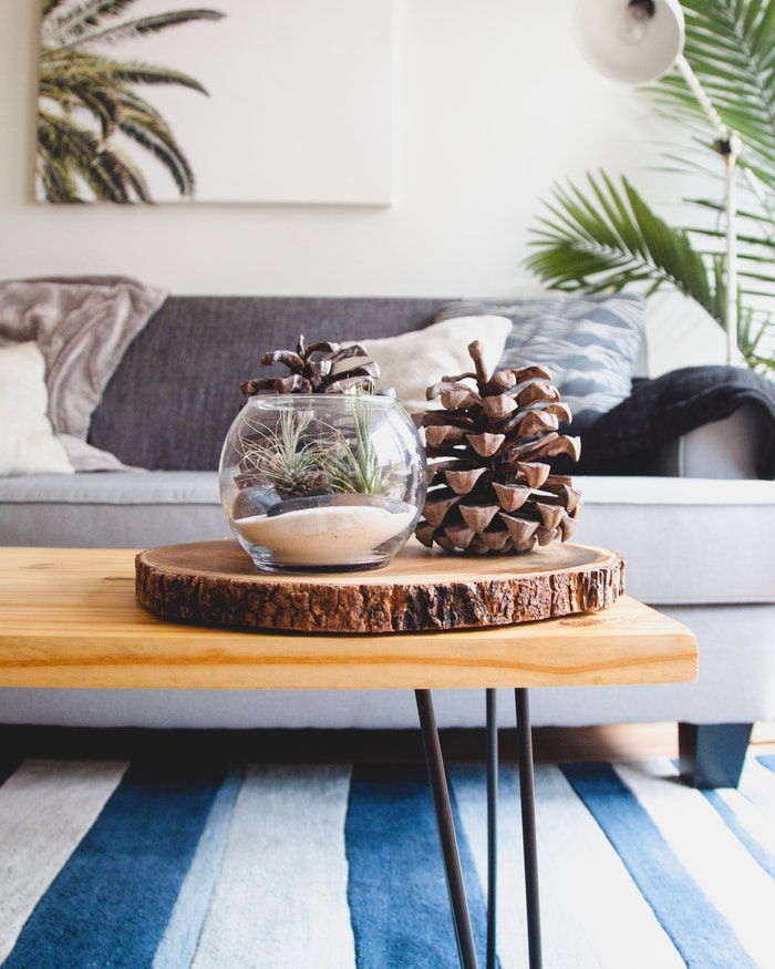 Tips for Your First Apartment - 7 Essentials for your living room.