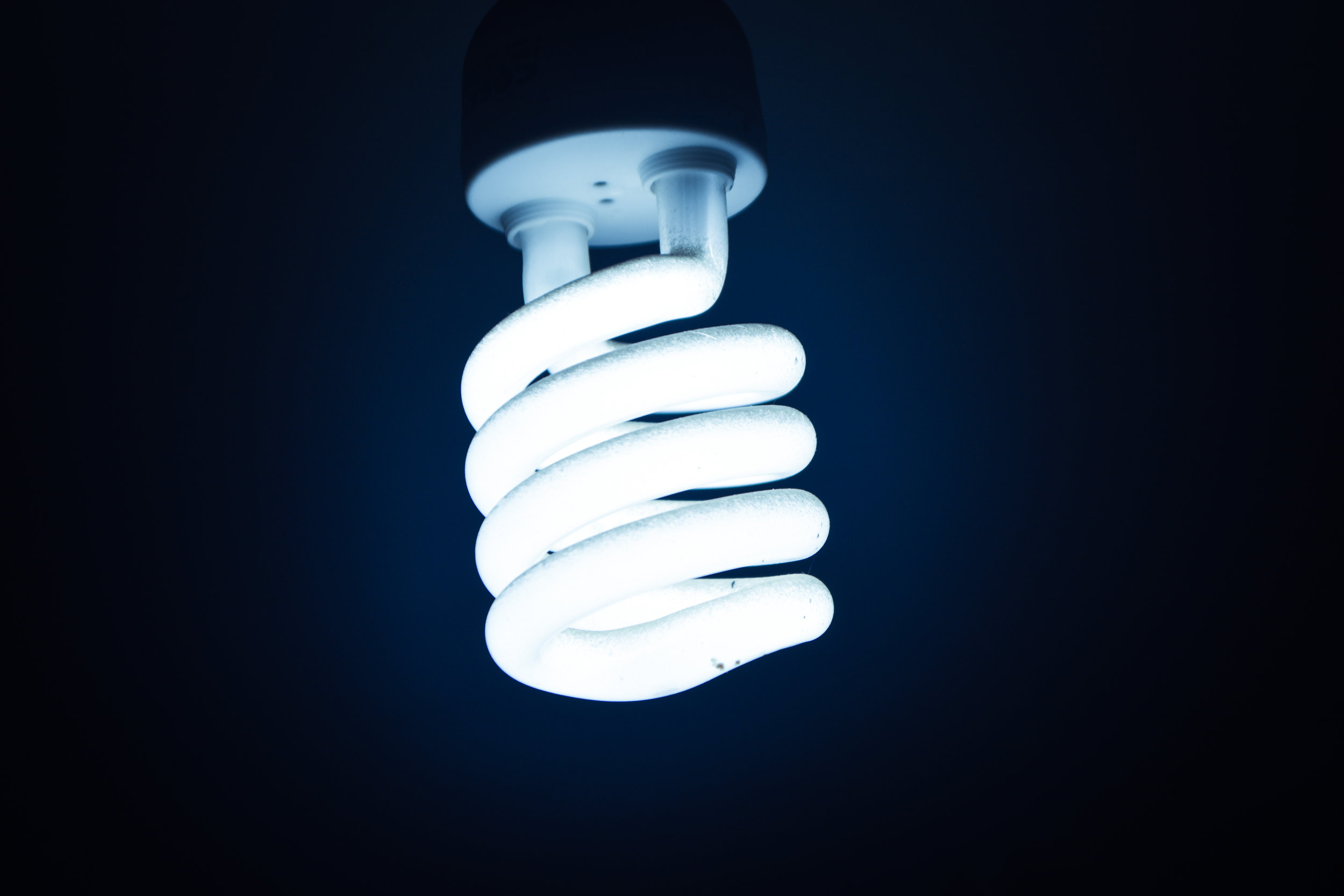 Canva - White Cfl Bulb.jpg