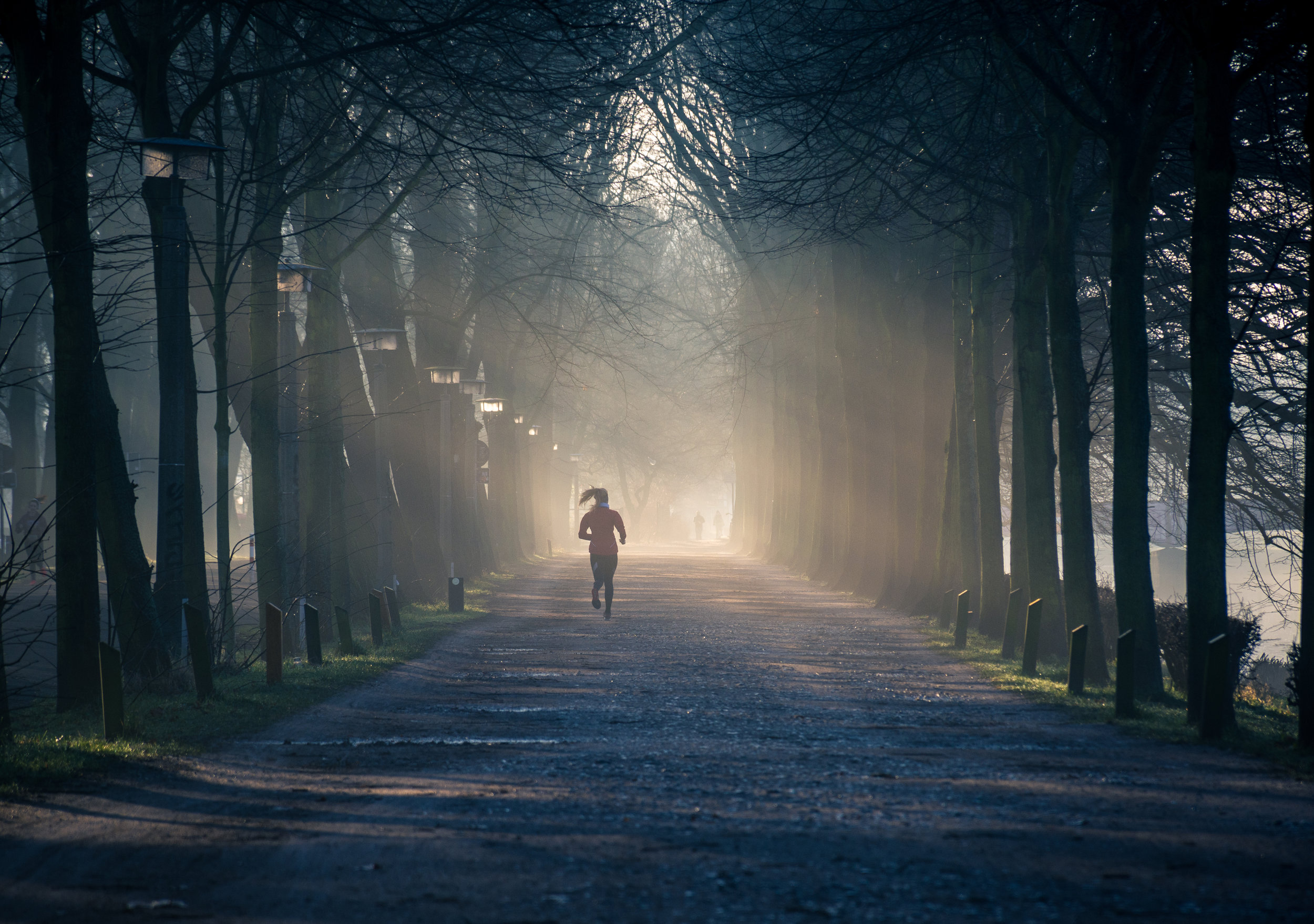 Canva - Person Running Near Street Between Tall Trees.jpg