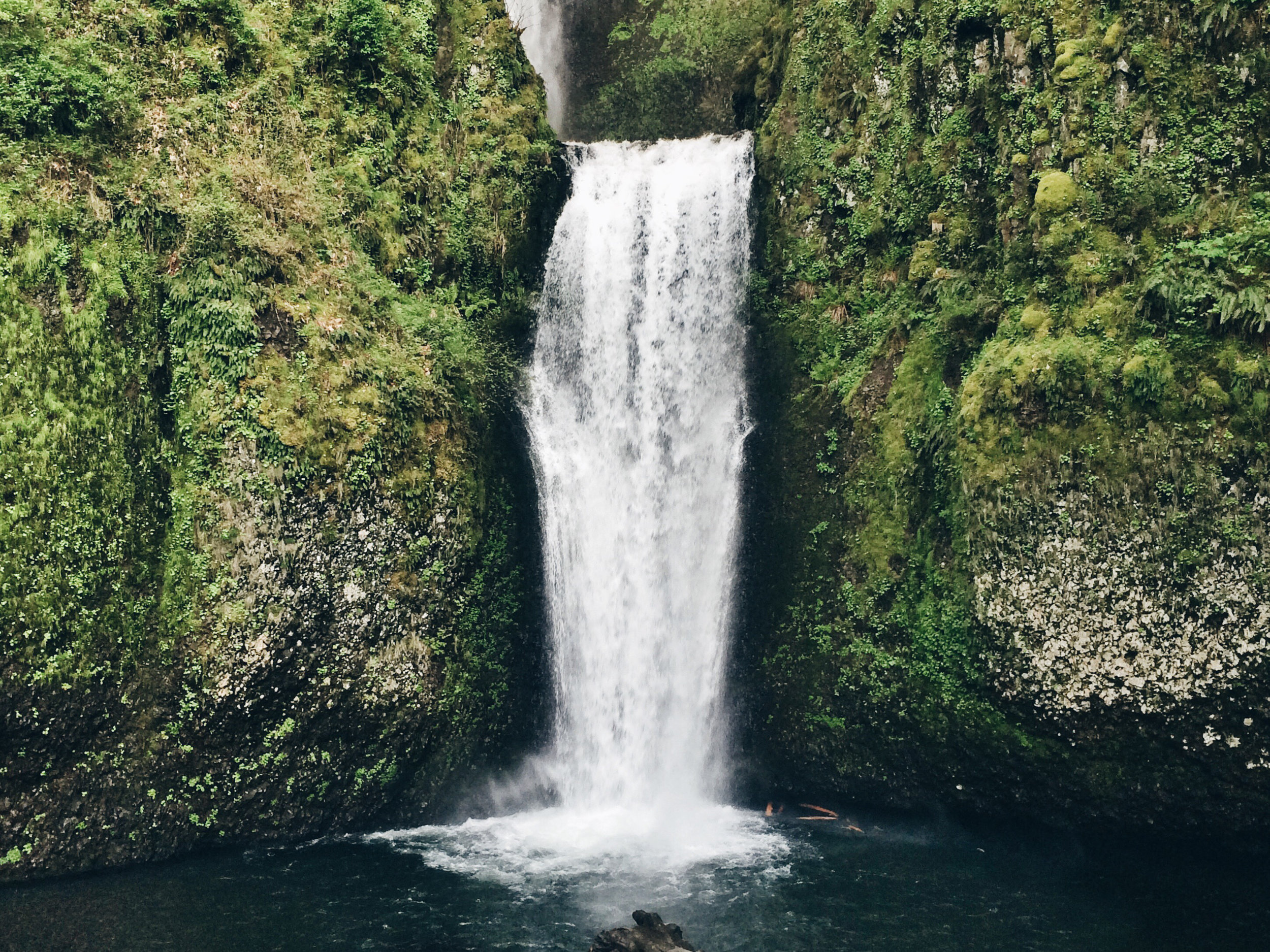 Canva - Landscape Photography of Waterfall.jpg