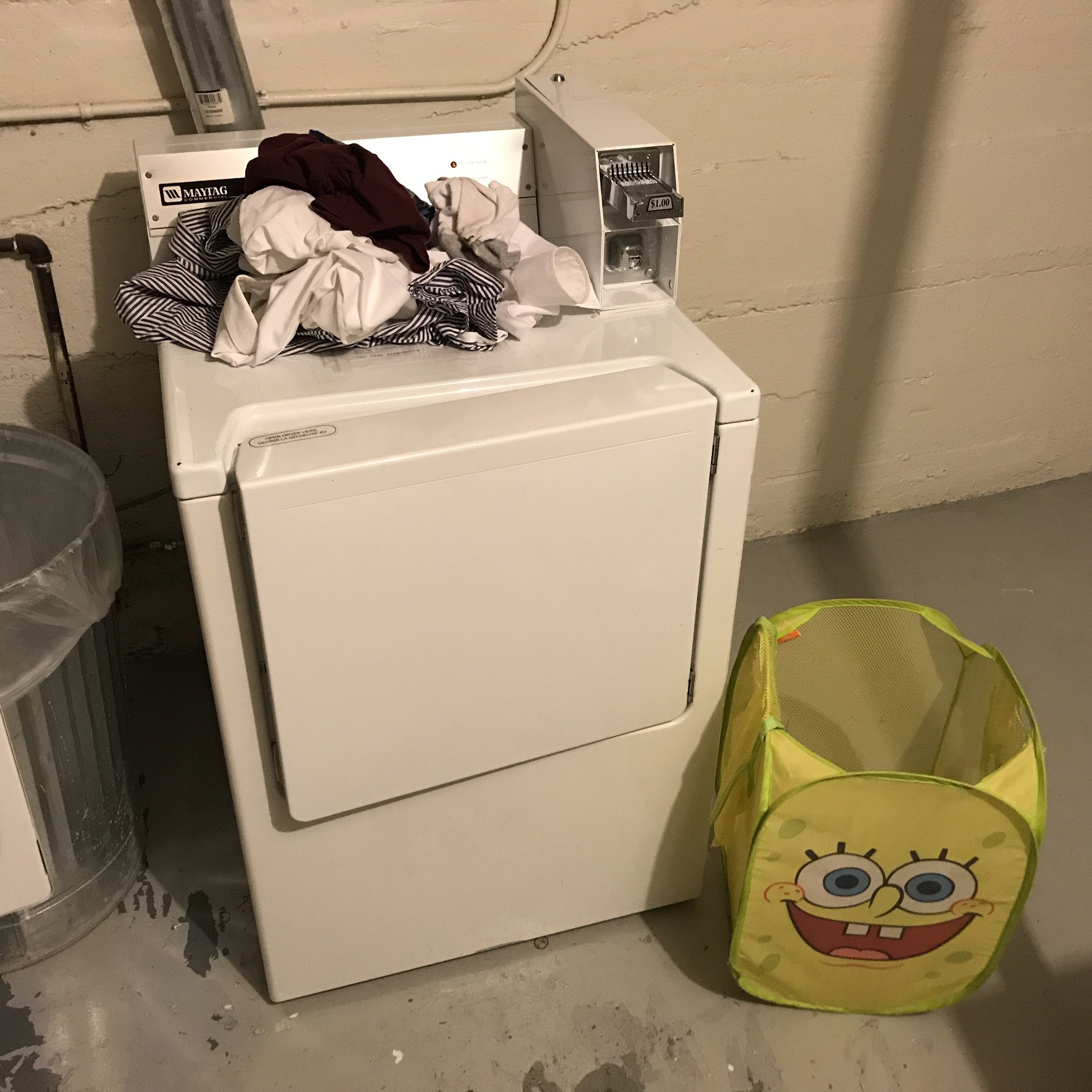 A carefully staged scene in my laundry room