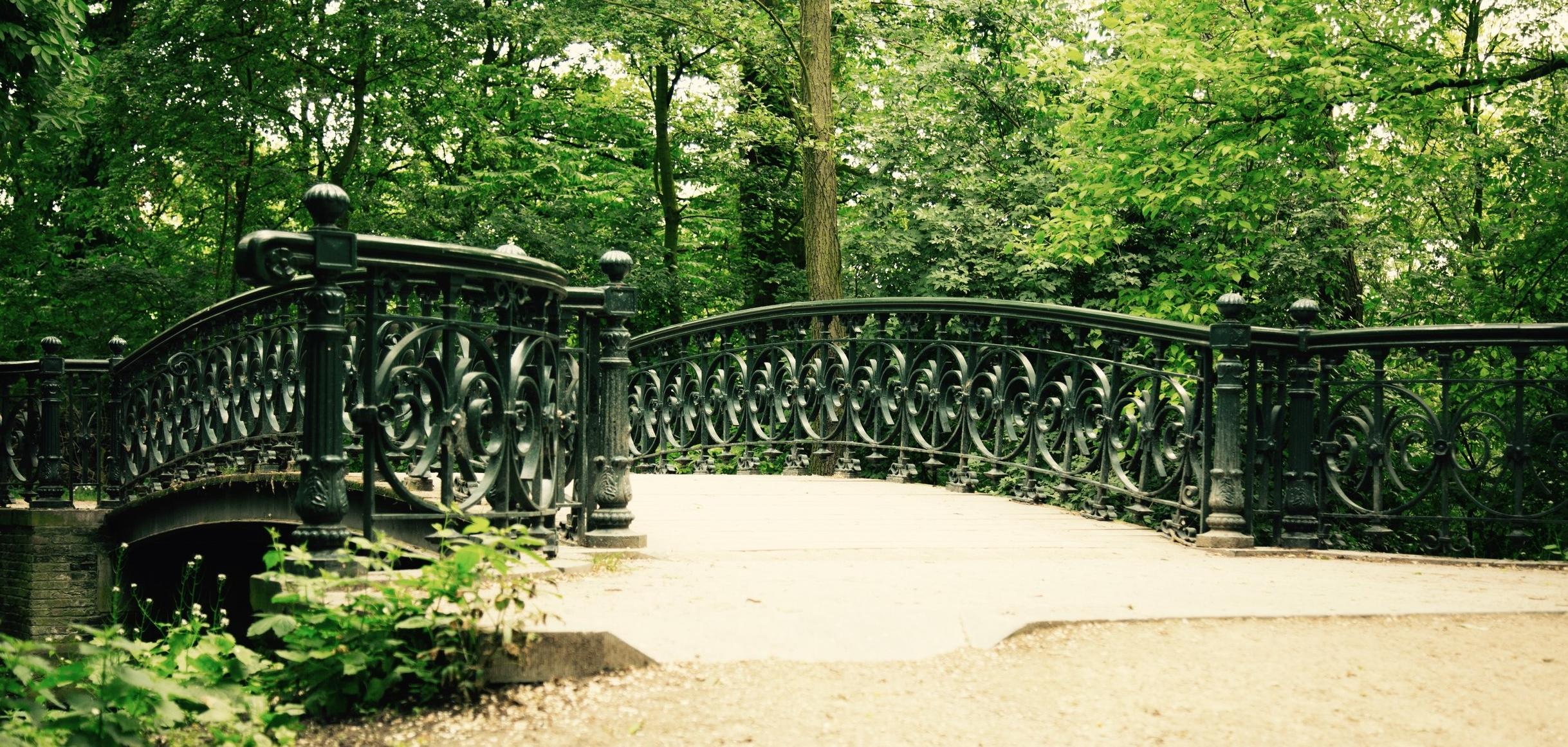 Bridge - marc deely