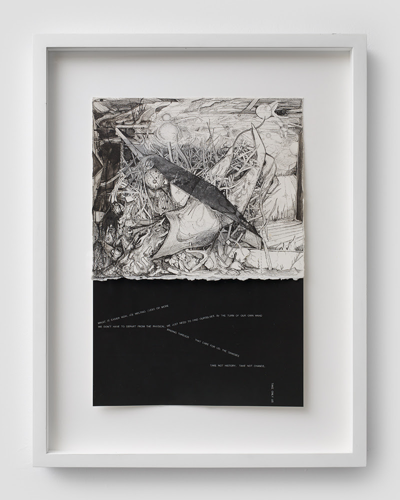 Max Razdow.  The Grasses , 2011, Pen, ink, xerox transfer, jet print, 12.75 x 8.5 inches