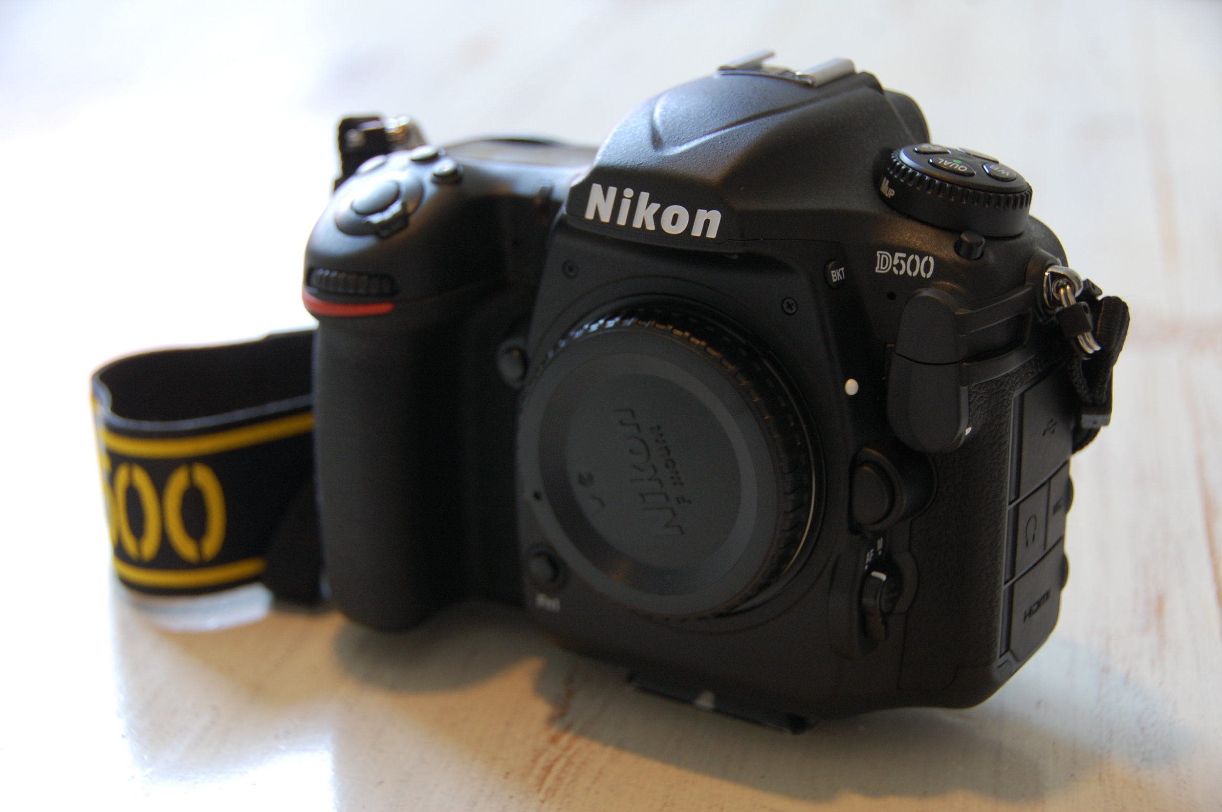 My new camera, the Nikon D500. a true masterpiece. FX quality camera in a DX format body.