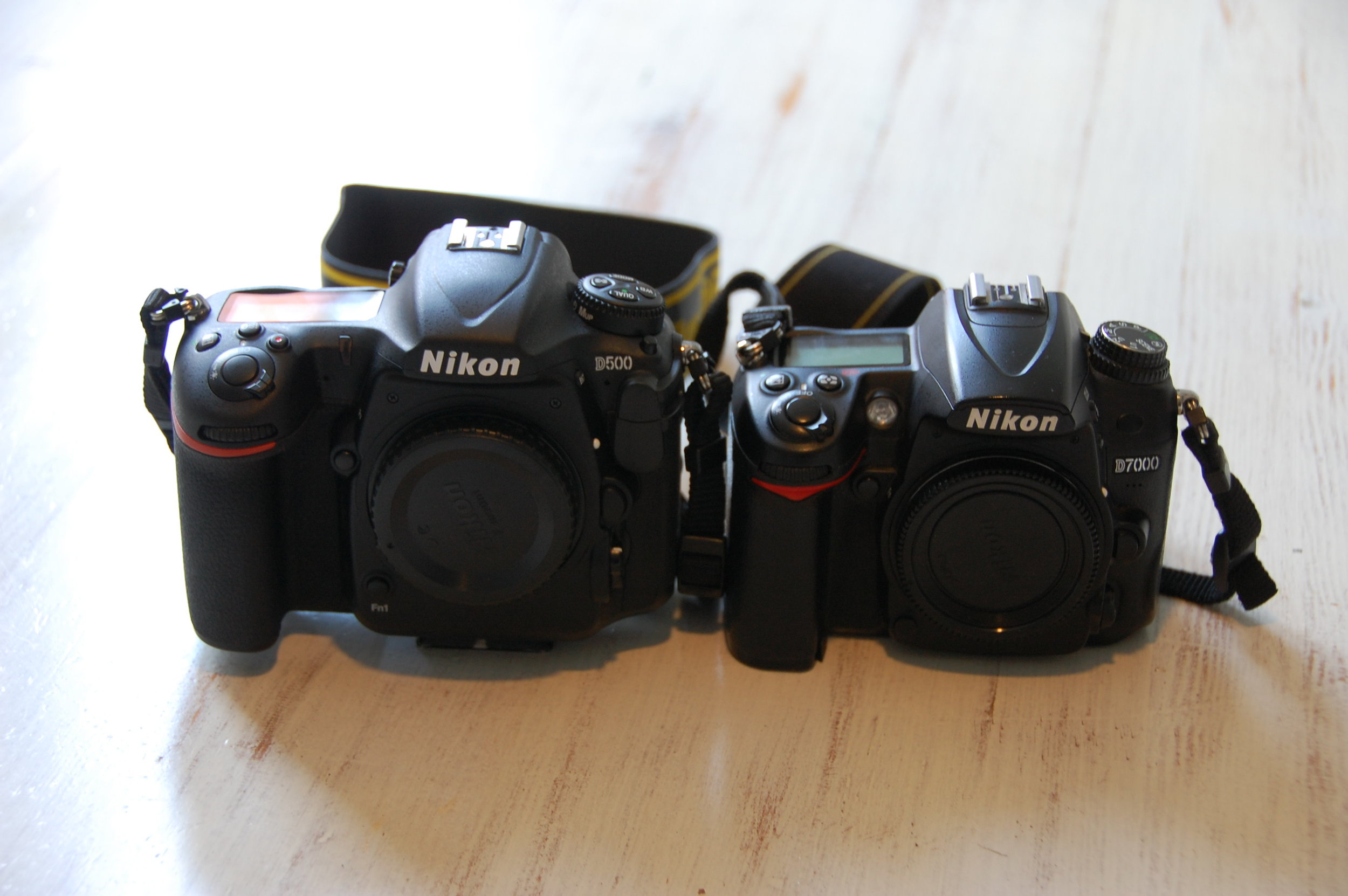 The Nikon D500 and the Nikon D7000 next to each other. Its obvious that the D500 is the bigger adult brother of the D7000. Both camera's are totally awesome.