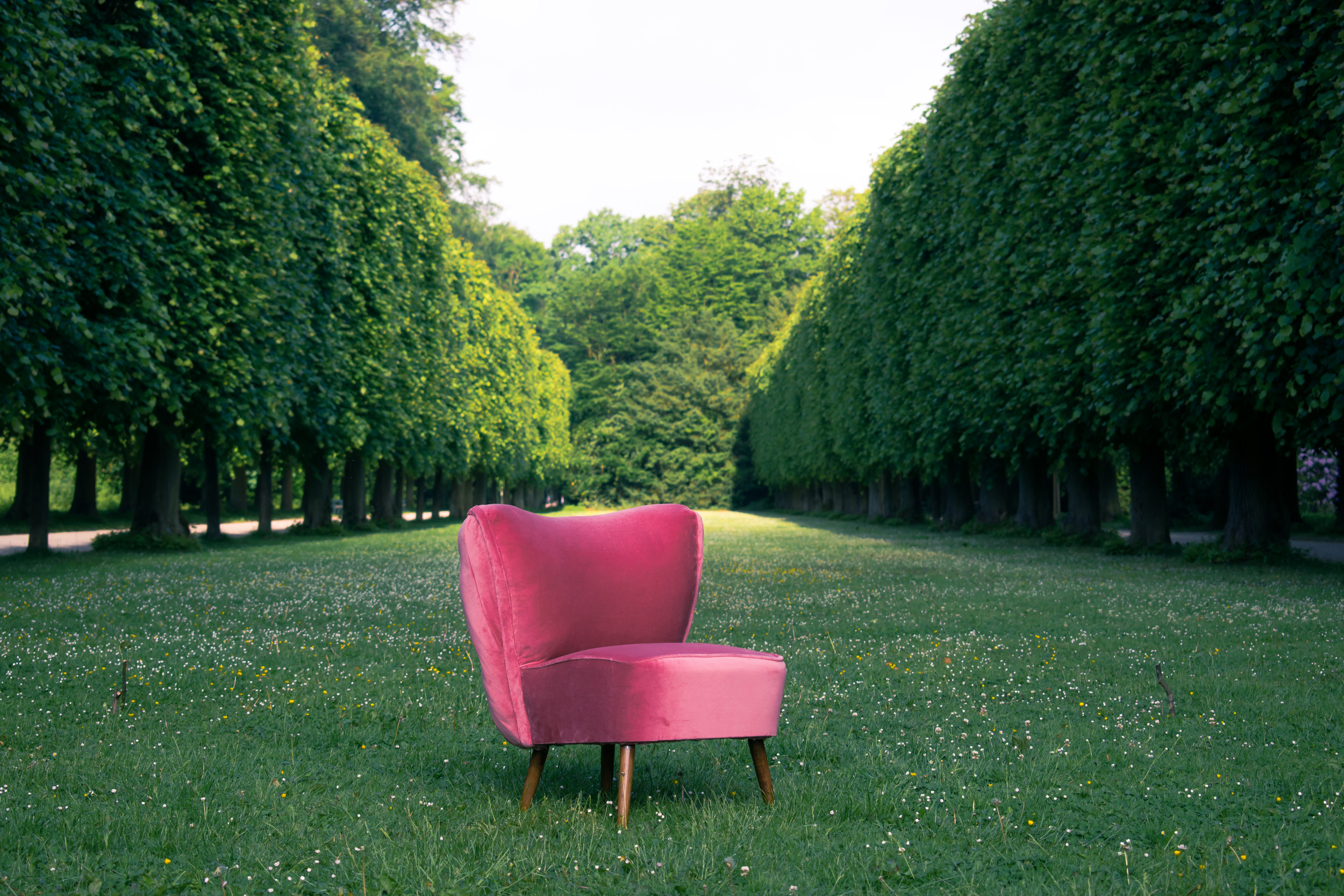pink velvet cocktail chair, lynda sparshatt