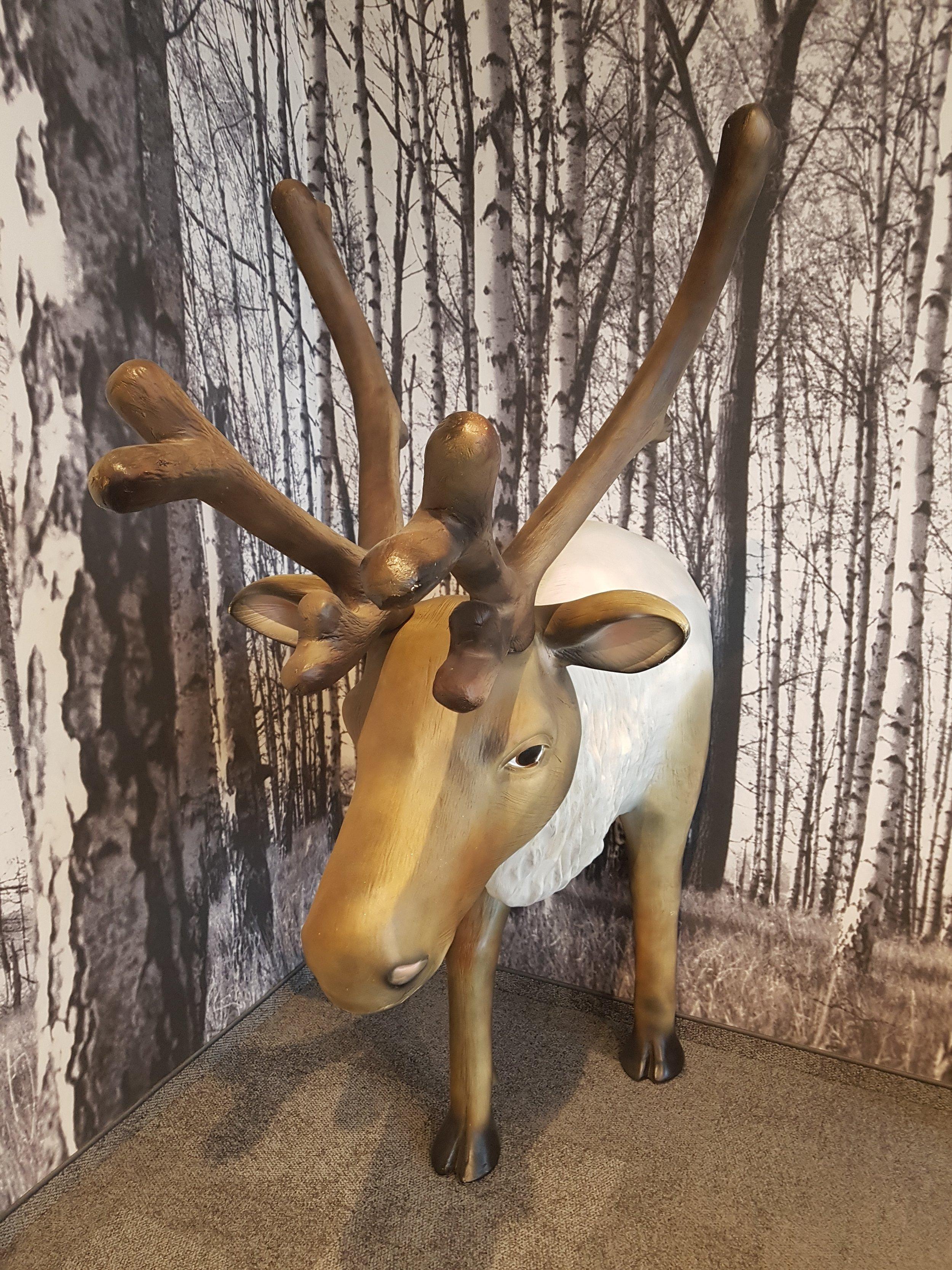 trivago campus moose room