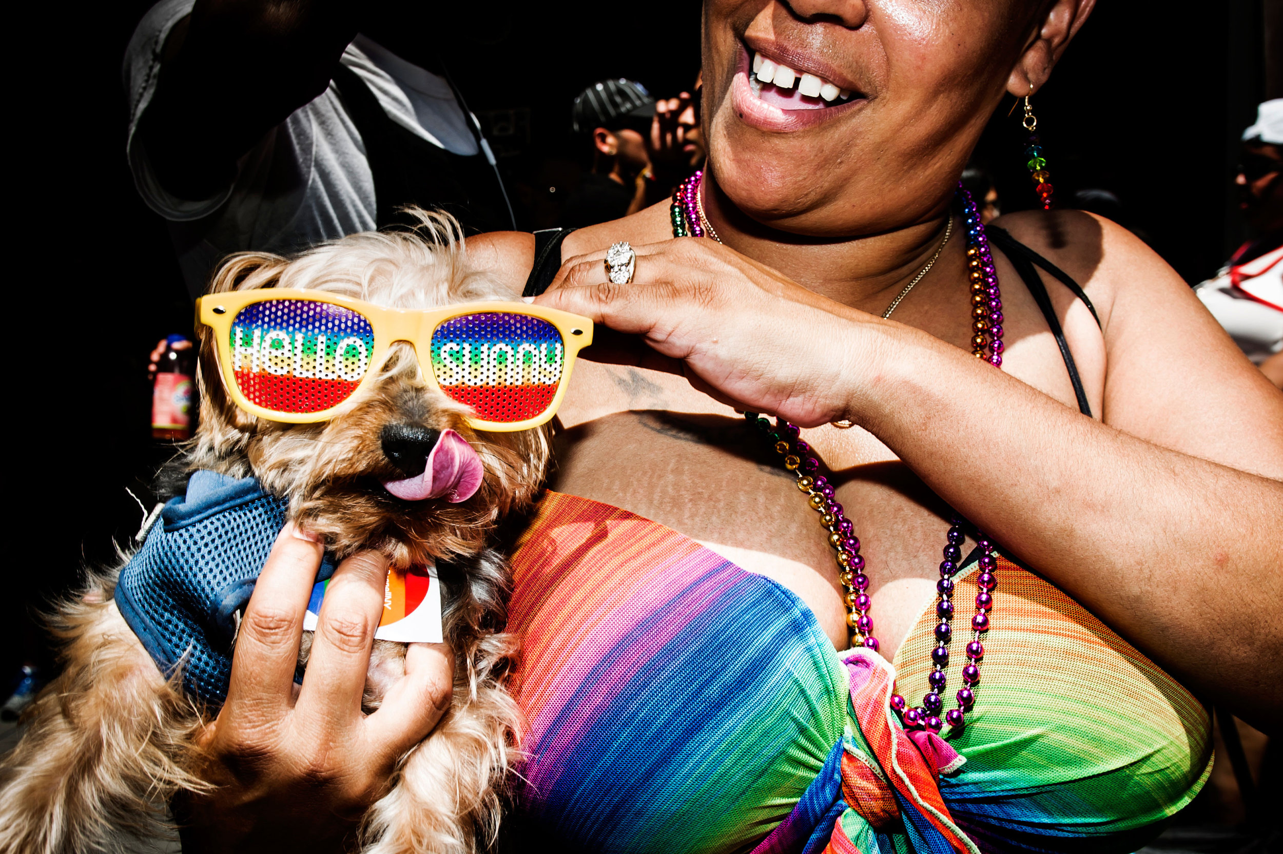 pride march puppy.jpg