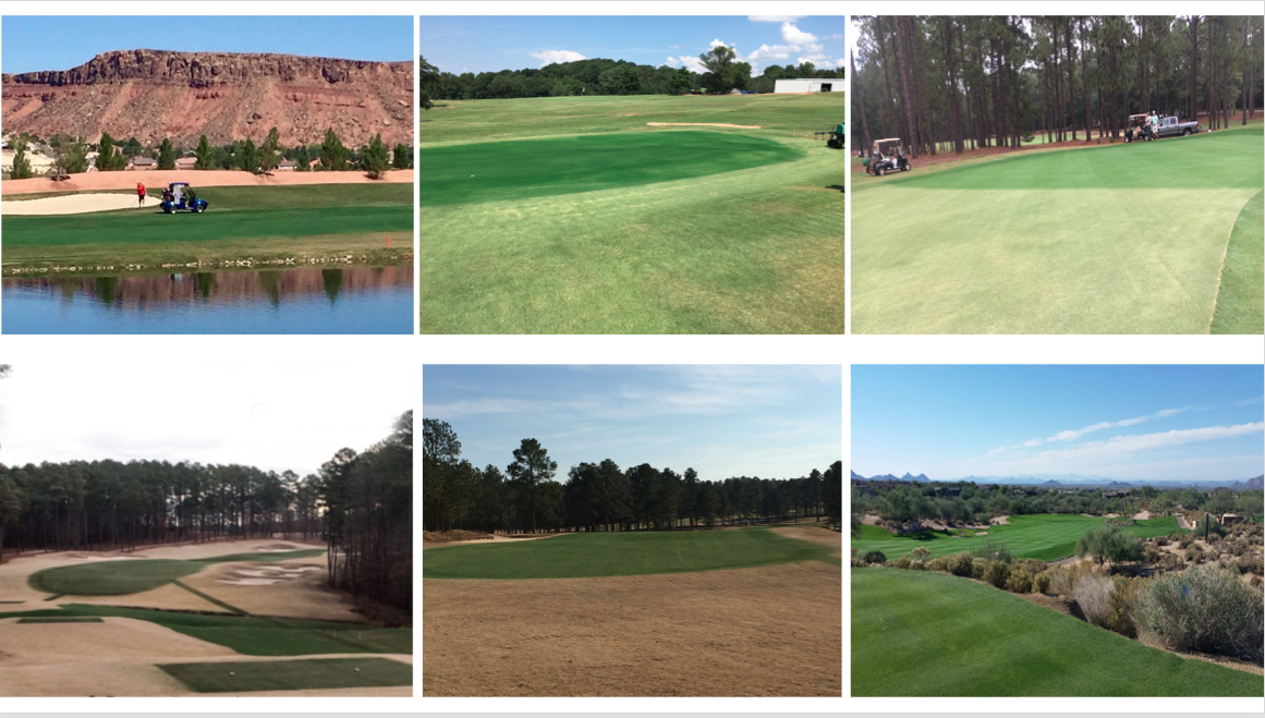 Endurant  organic colorants are turf pigments that safely and effectively improve turfgrass aesthetics. The professional's choice in lawn colorants due to its natural, rich hues,  Endurant  paint gives your turf or lawn a healthy and fresh look, particularly in times of winter dormancy, drought, listing a property for sale or instead of overseeding. Nobody wants brown grass! We also offer a popular  Home Paint  expertly formulated for landscapers and homeowners. Because each course has a variety of needs, we'd like to discuss which blend/s and amounts work for you. Contact information below!