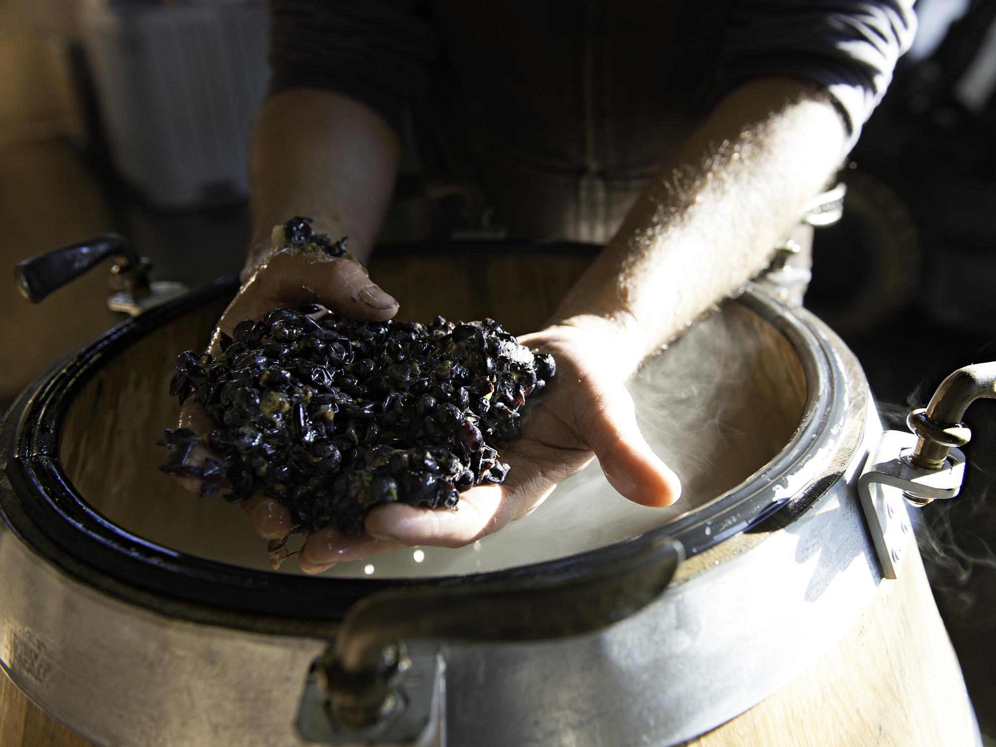 Van Duzer Vineyard & Winery
