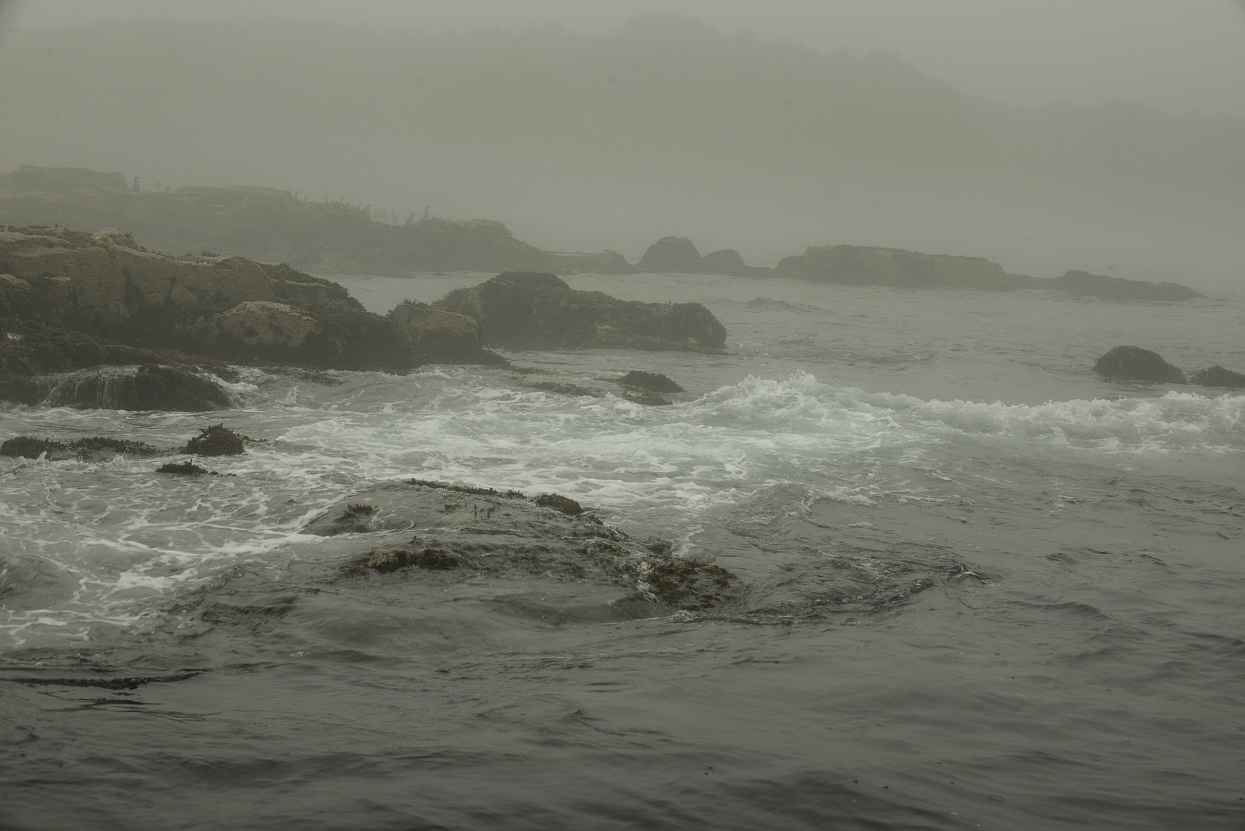 Waves funnel over rocks into a pocket creating wash, current and a great place for a couple stripers to sit.