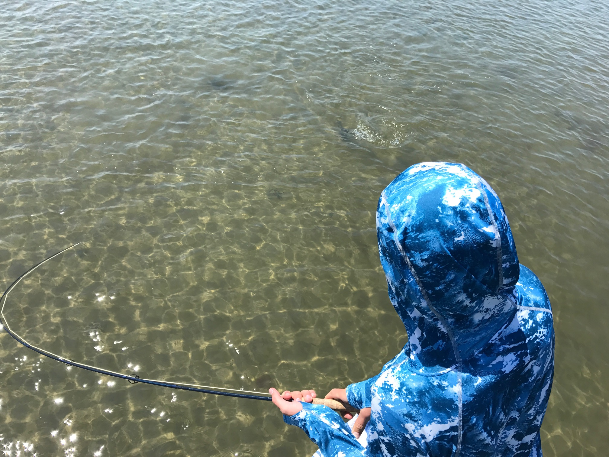 Tugging on a striped bass with the T&T Exocett 8wt.
