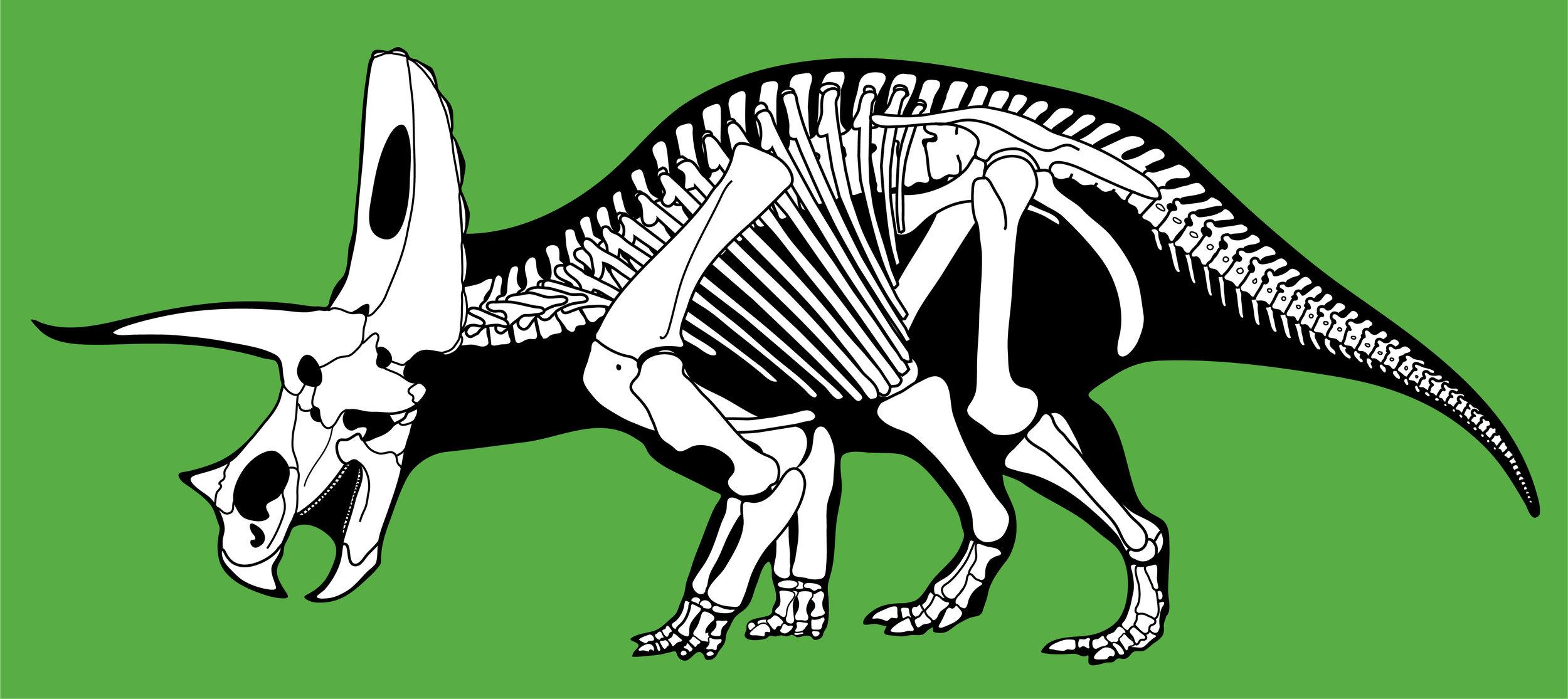Torosaurus_latus.jpg