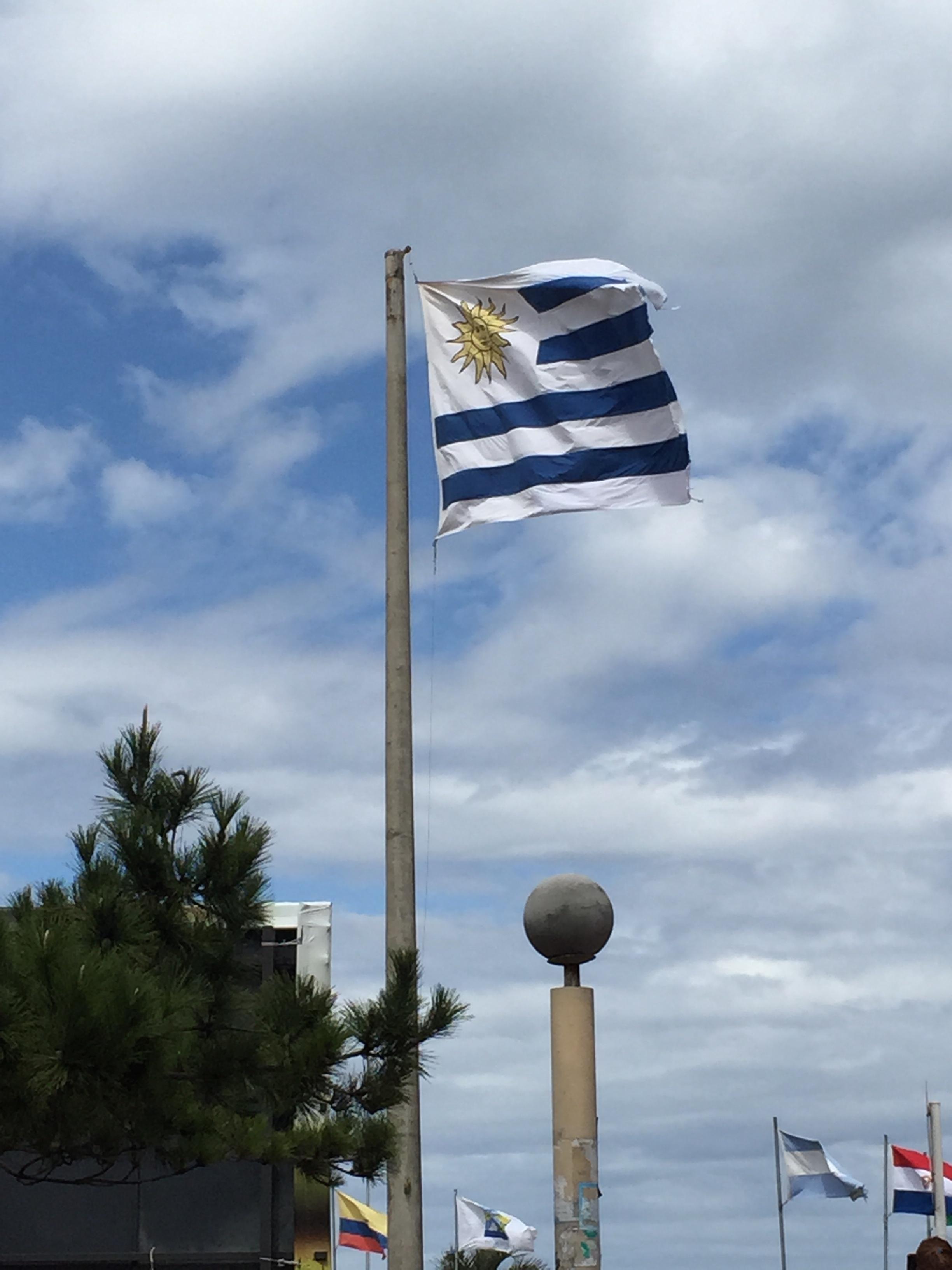 stock-photo-la-bandera-uruguayo-104136065.jpg