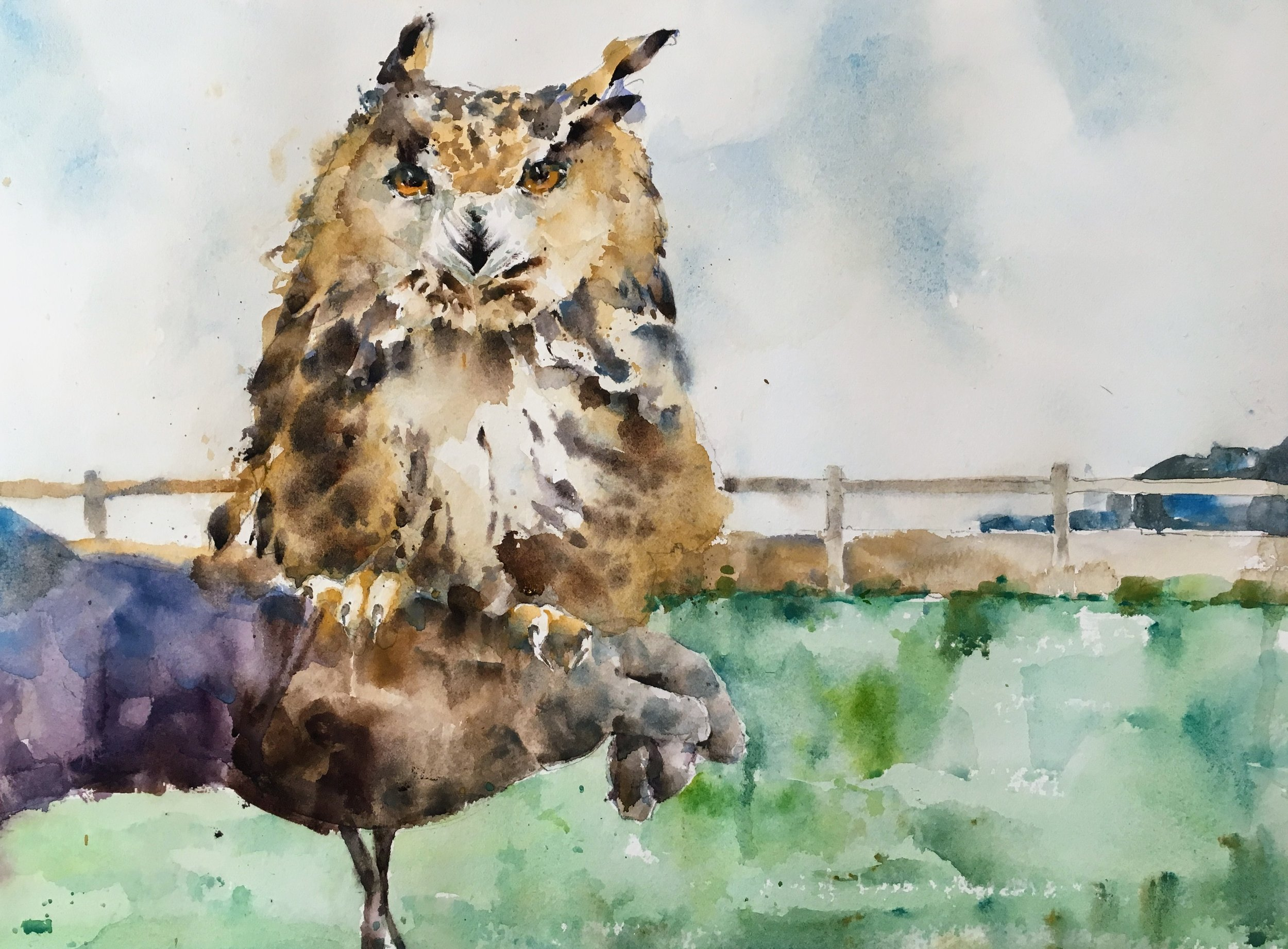 "Owl perching in the wind. Michele Clamp. Watercolor. 11""x14"""