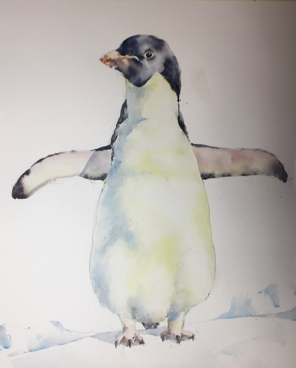 """Outstretched Penguin.  Michele Clamp.  Watercolor.  20""""x16"""""""